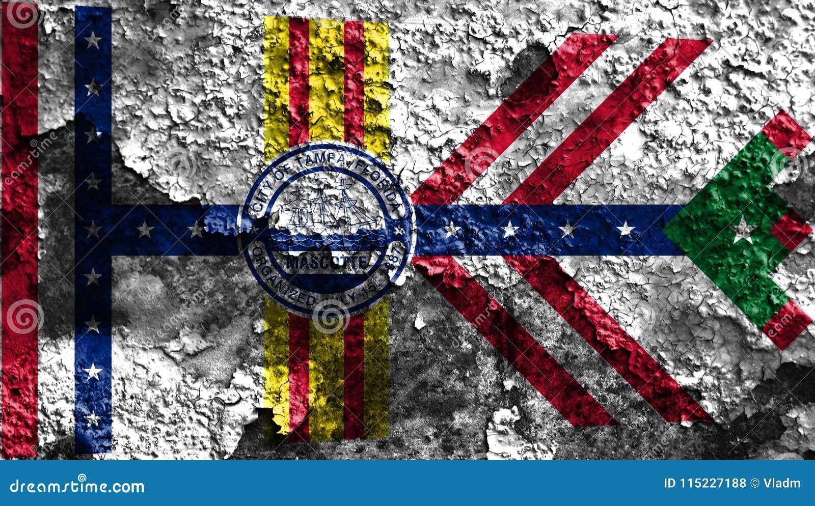 De vlag van de de stadsrook van Tamper, de Staat van Florida, de Verenigde Staten van Amerika