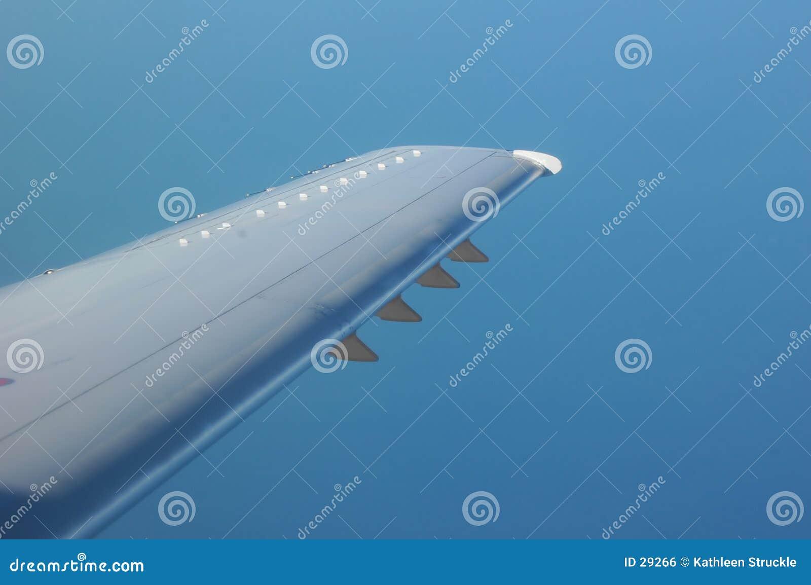 De Vleugel van het vliegtuig