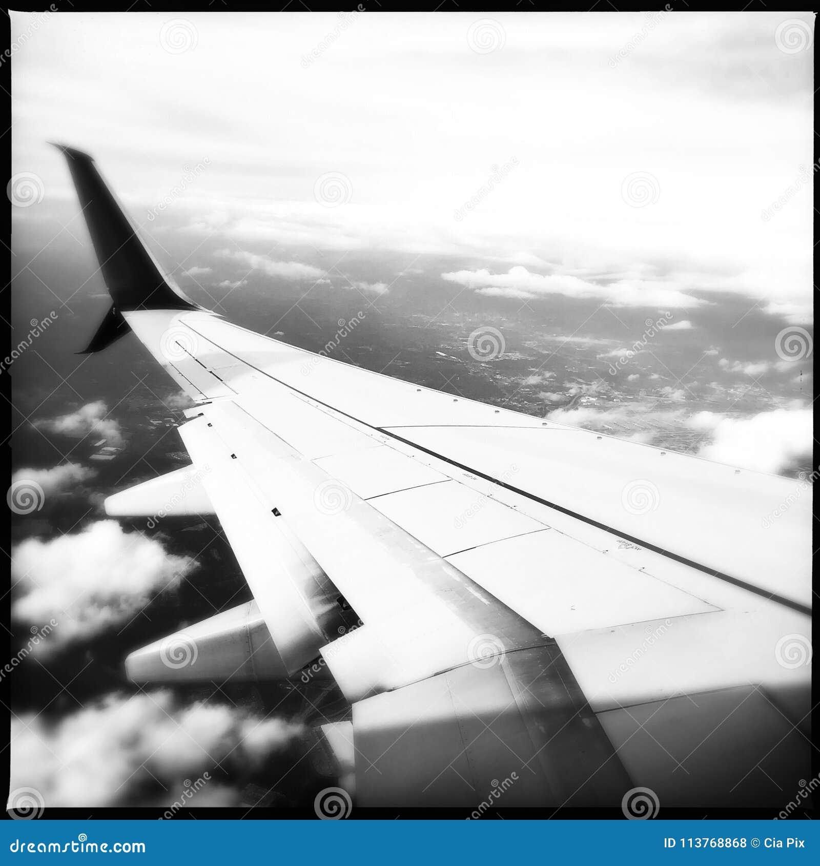De vleugel van het vliegtuig tijdens de vlucht