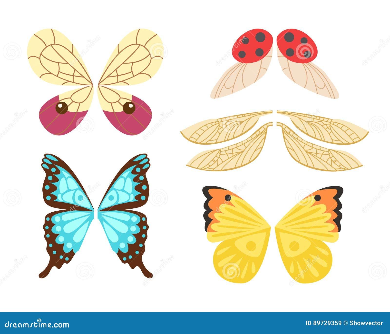 De vleugels isoleerden de dierlijke vlucht van de de insectenvrijheid van de veerpignon en natuurlijke van het de vredesontwerp v