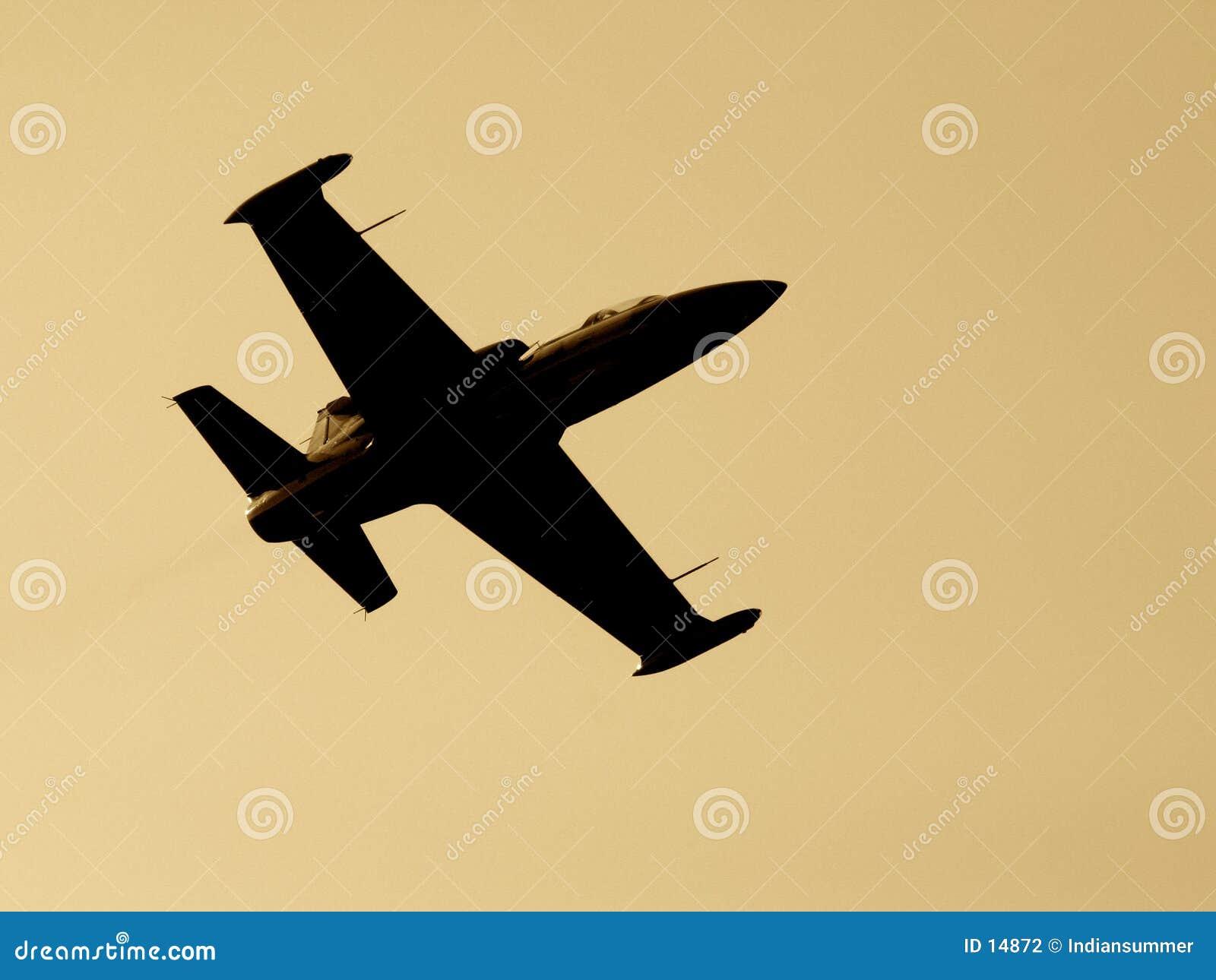 De vliegtuigen van de vechter