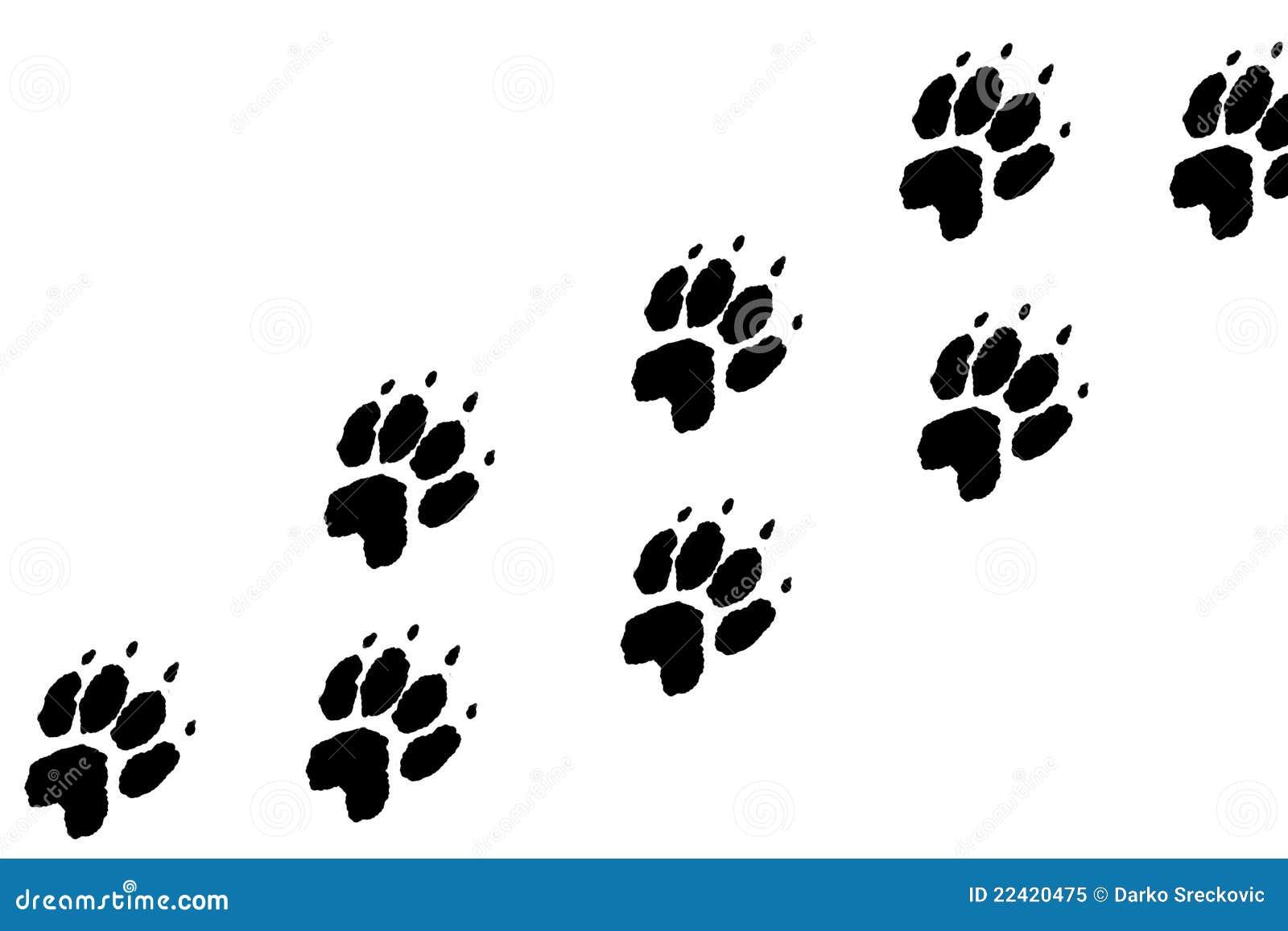 De voetafdrukken van poten
