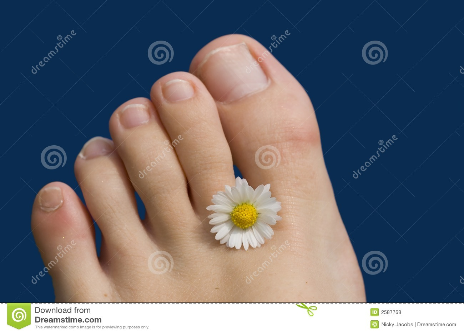 De voetentenen van de zomer