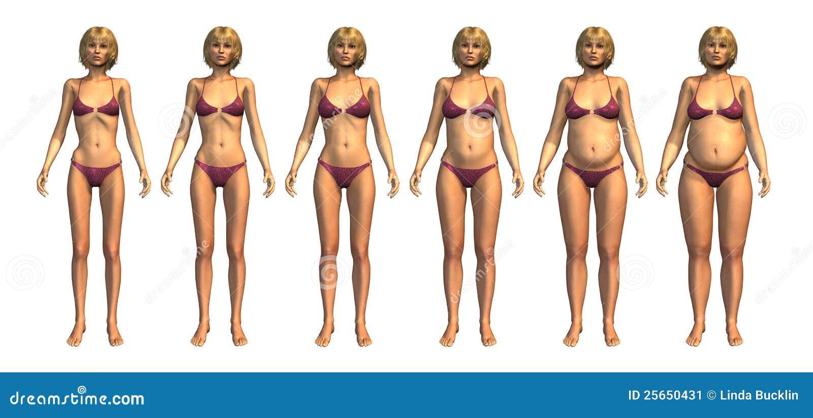 Gammes de graisse corporelle normale