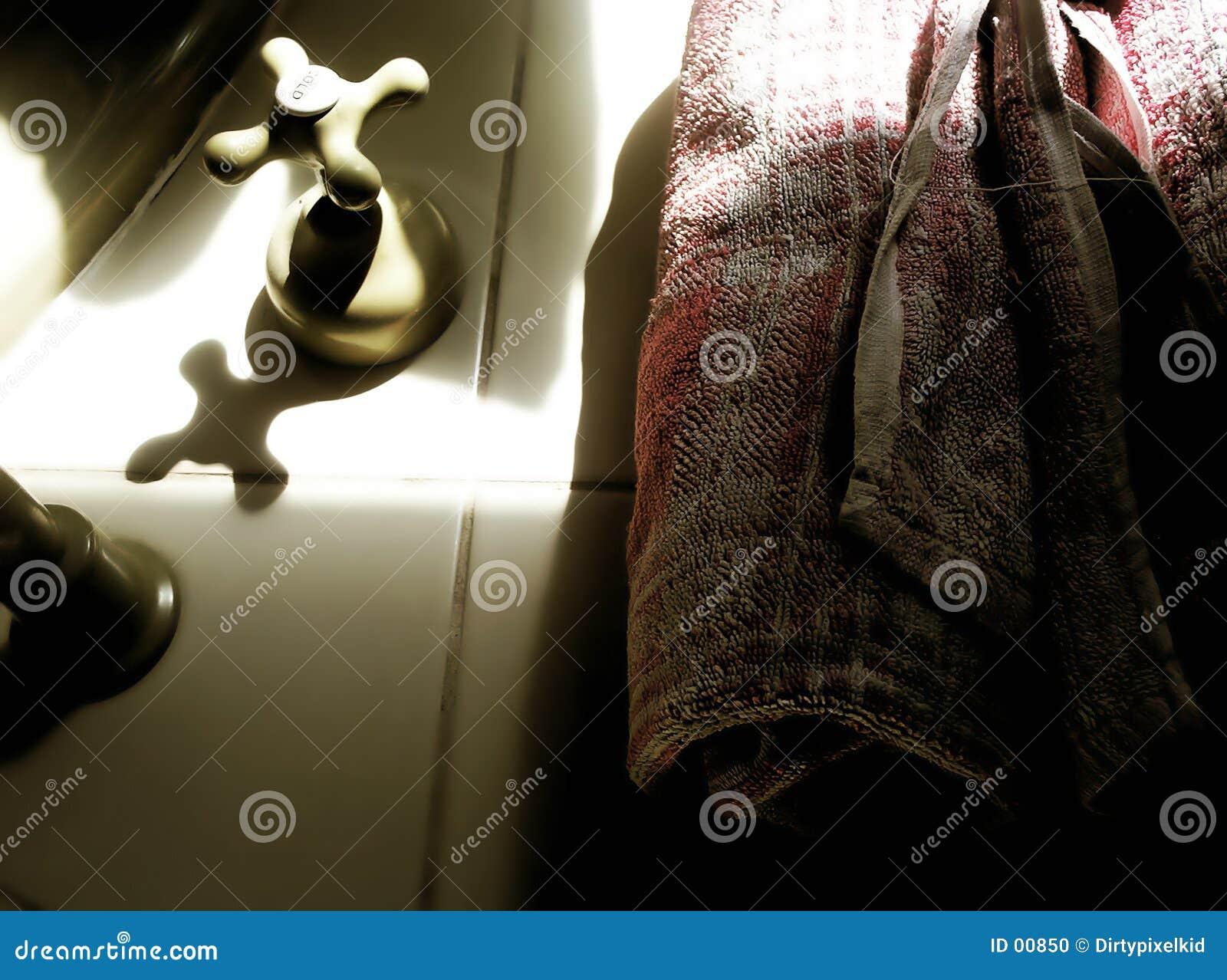 De Voorwerpen van de badkamers