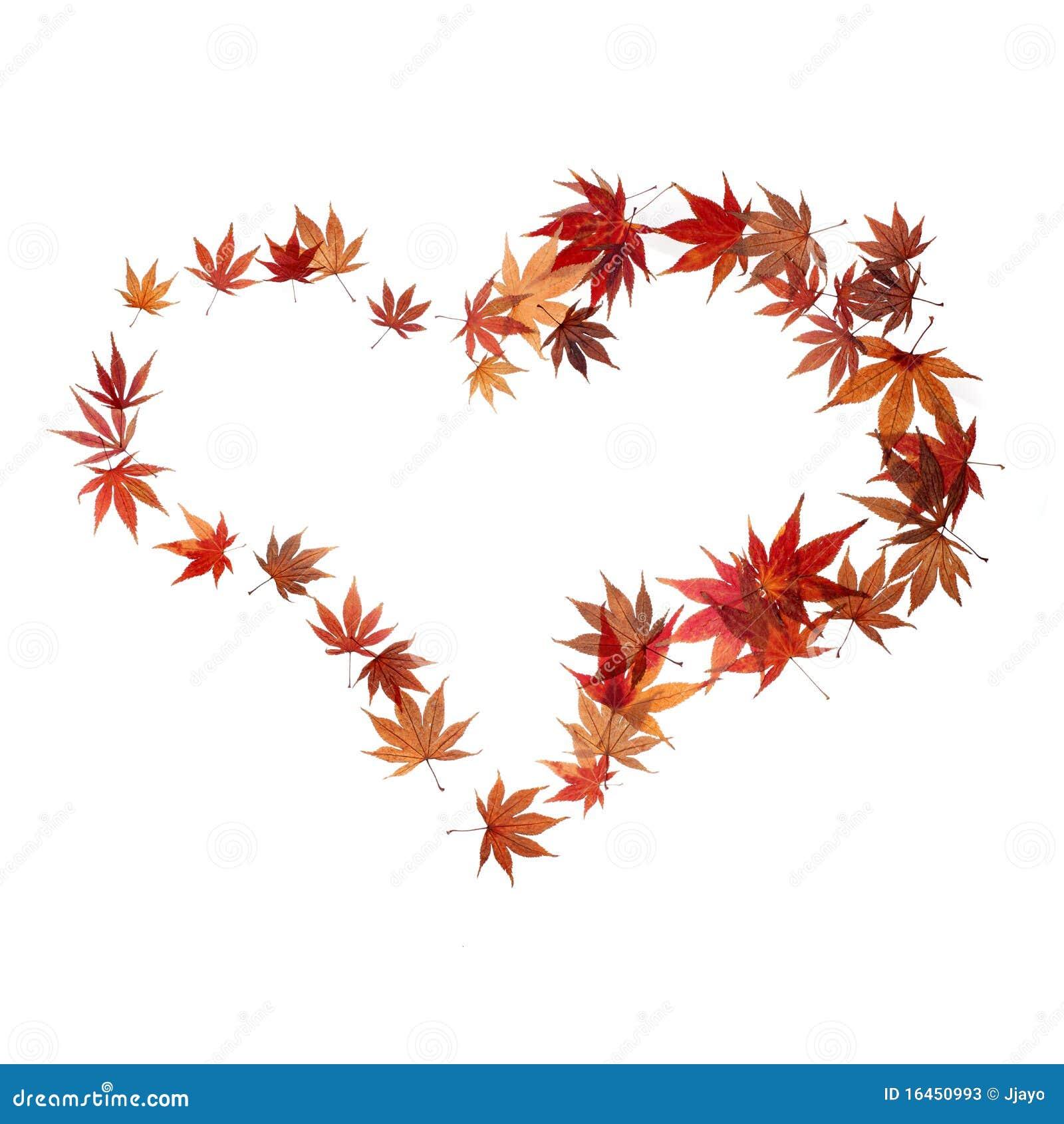 De vorm van het hart die door de bladeren van de for Door het hart van china
