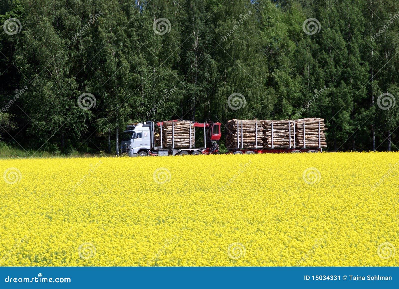 De Vrachtwagen van het registreren en het Gebied van het Raapzaad