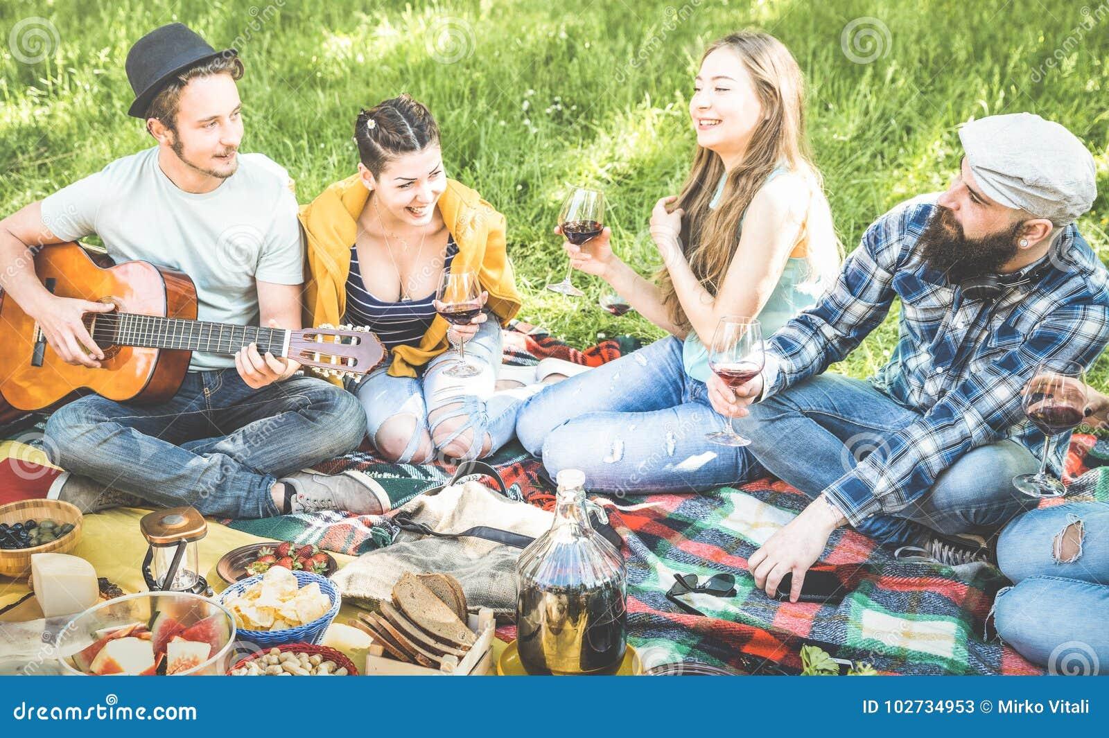 De vrienden groeperen het hebben van pret het openlucht toejuichen bij bbq picknickbarbecue