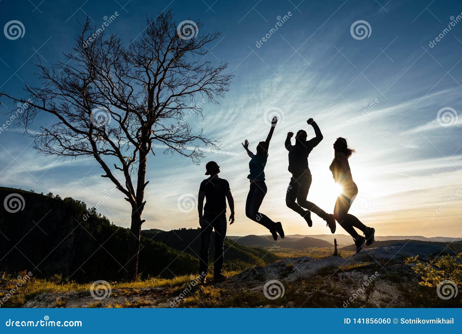 De vrienden hebben pret bij zonsondergang Grappige vrienden Een groep mensen in aard Silhouetten van vrienden Beste Vriend Vriend