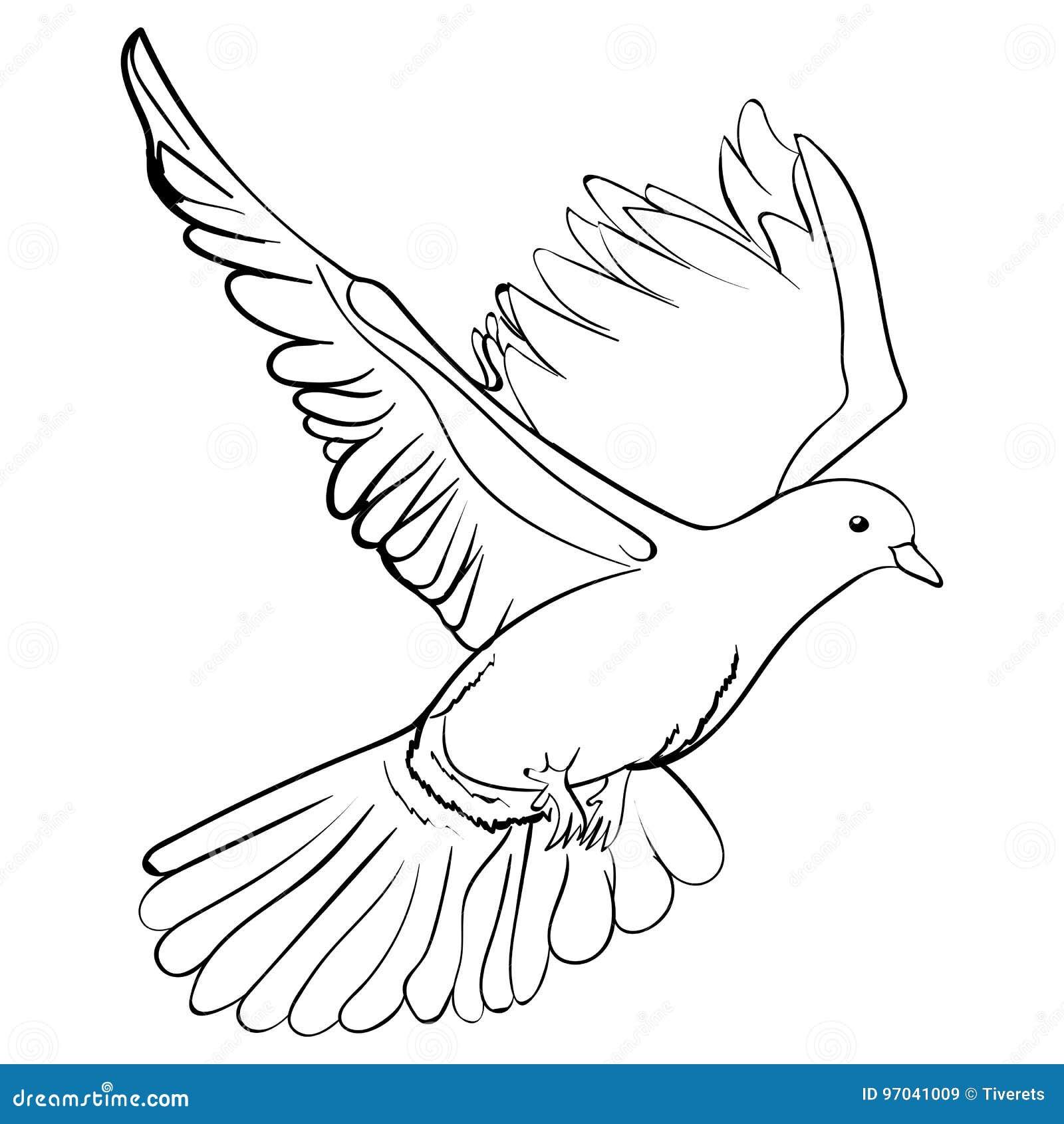 de vrije vliegende witte duif schetst vectorillustratie