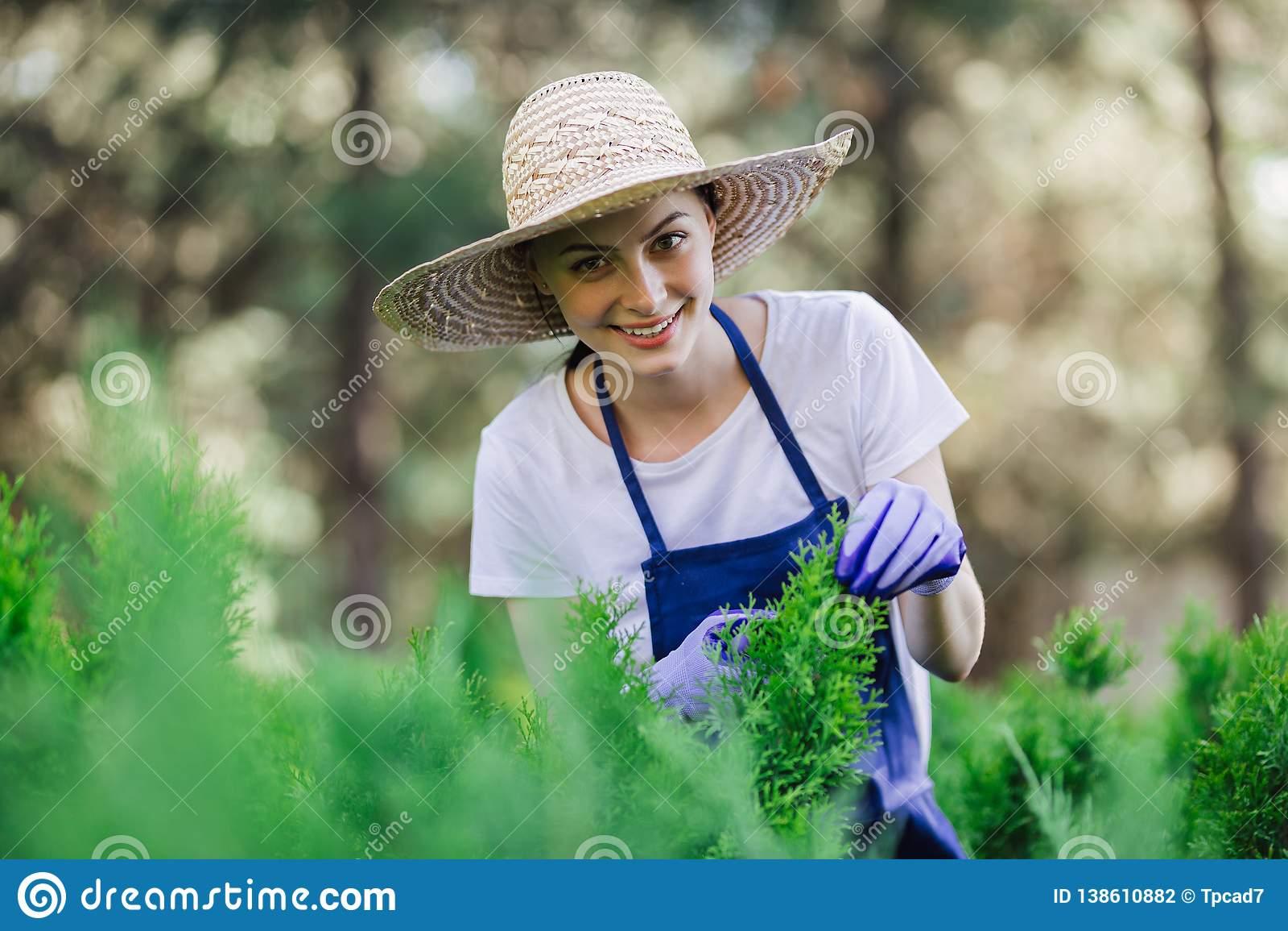 De vrouw gebruikt het tuinieren hulpmiddel om haag, scherpe struiken met tuinscharen in orde te maken