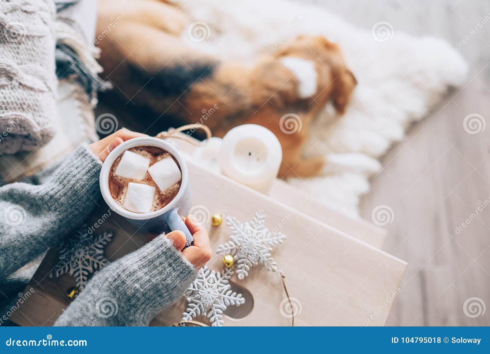 De vrouw overhandigt ith kop van heet chocolade dicht omhooggaand beeld, comfortabel huis,