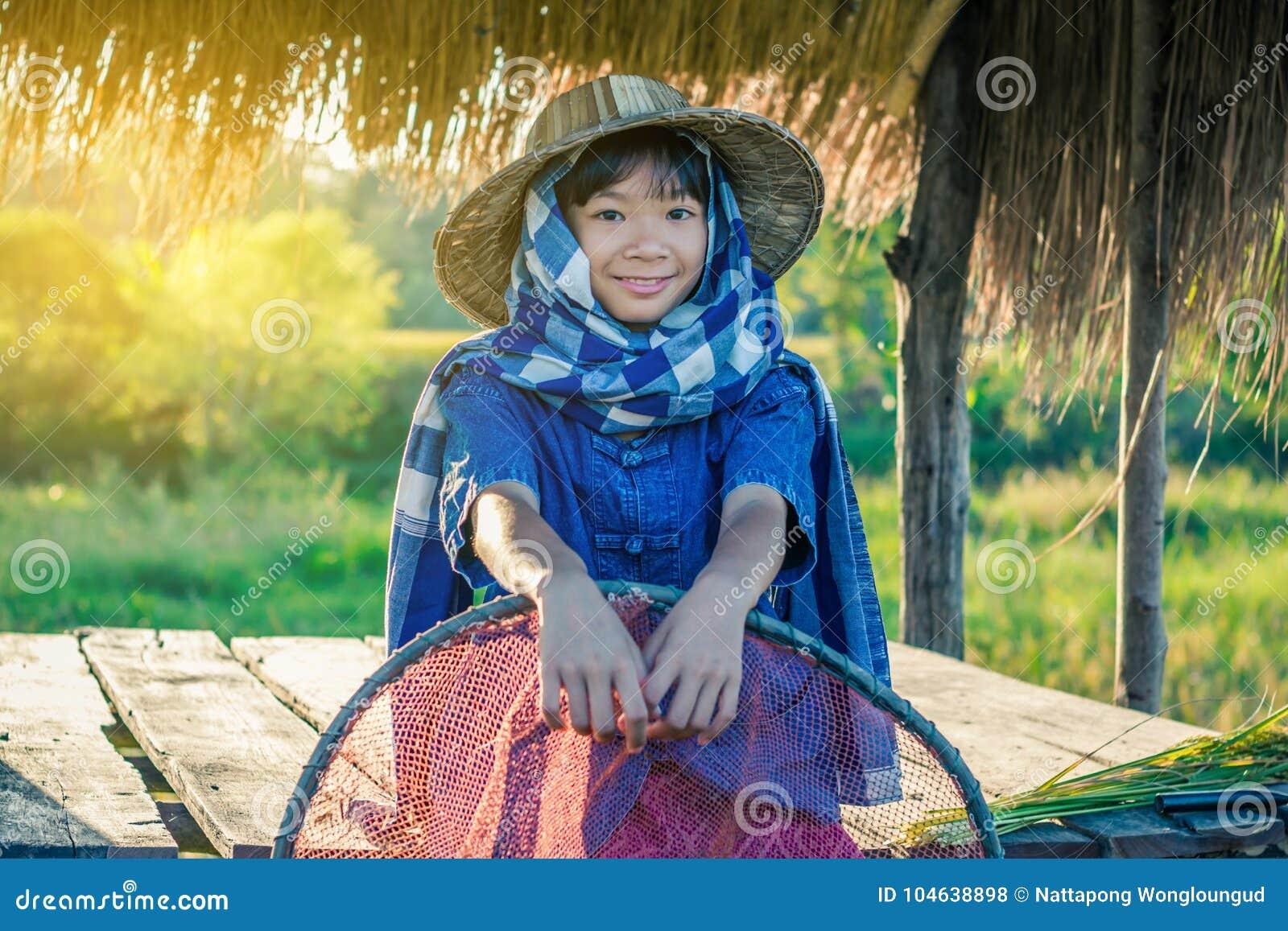 Download De Vrouwenlandbouwer Oogst Rijst In Thailand Stock Foto - Afbeelding bestaande uit blad, gebeurtenis: 104638898