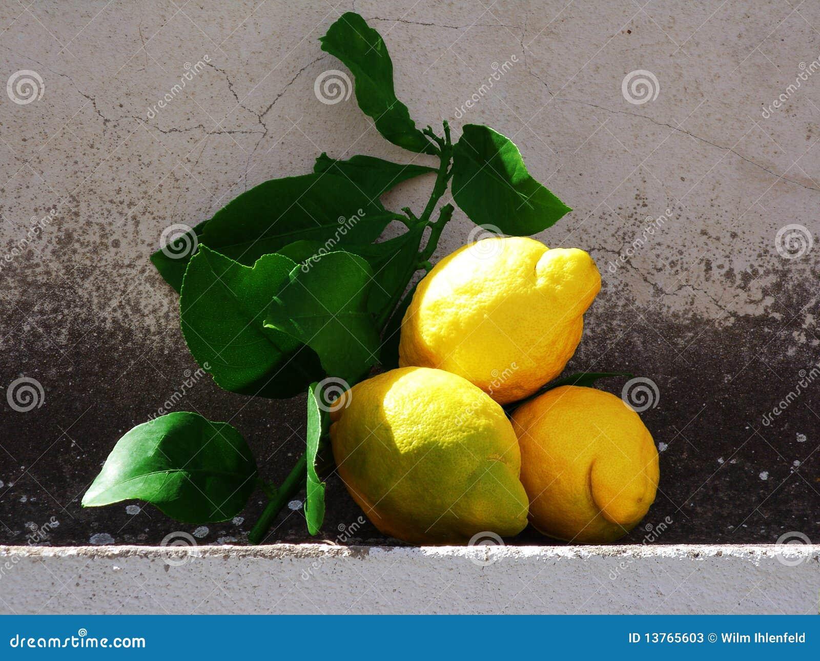 De vruchten van de citroen