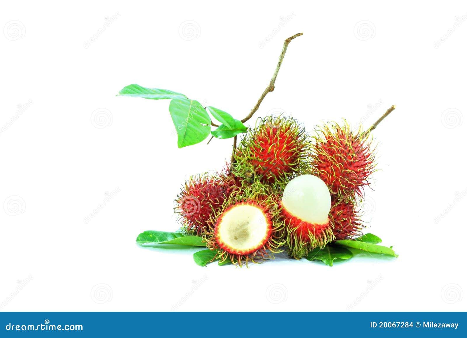 De vruchten van Rambutan