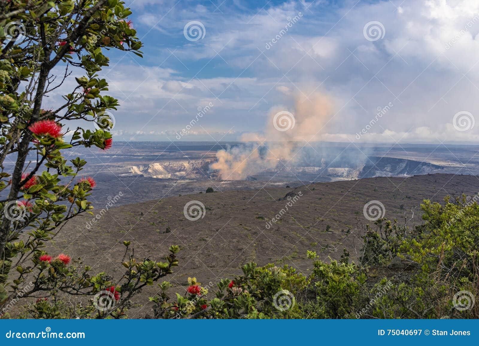 De Vulkaan van de Kilaueacaldera op het Grote Eiland Hawaï