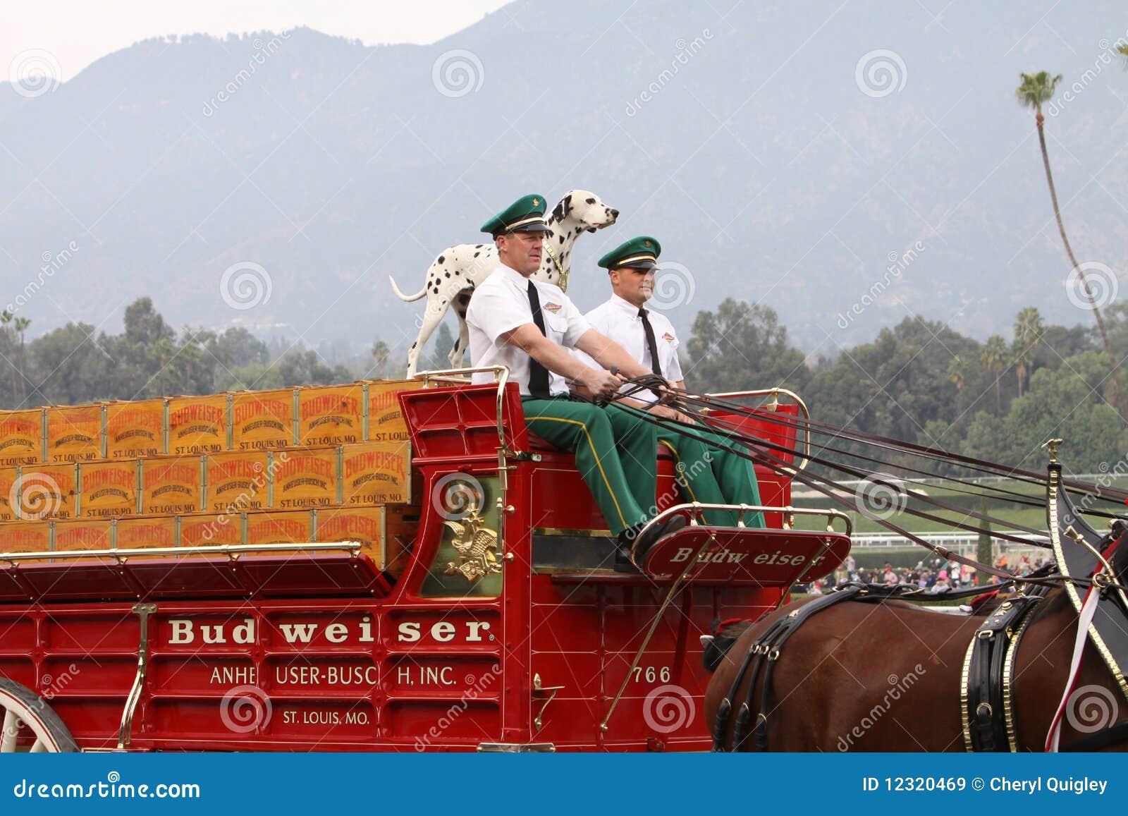 De Wagen van het Bier van Budweiser Clydesdale
