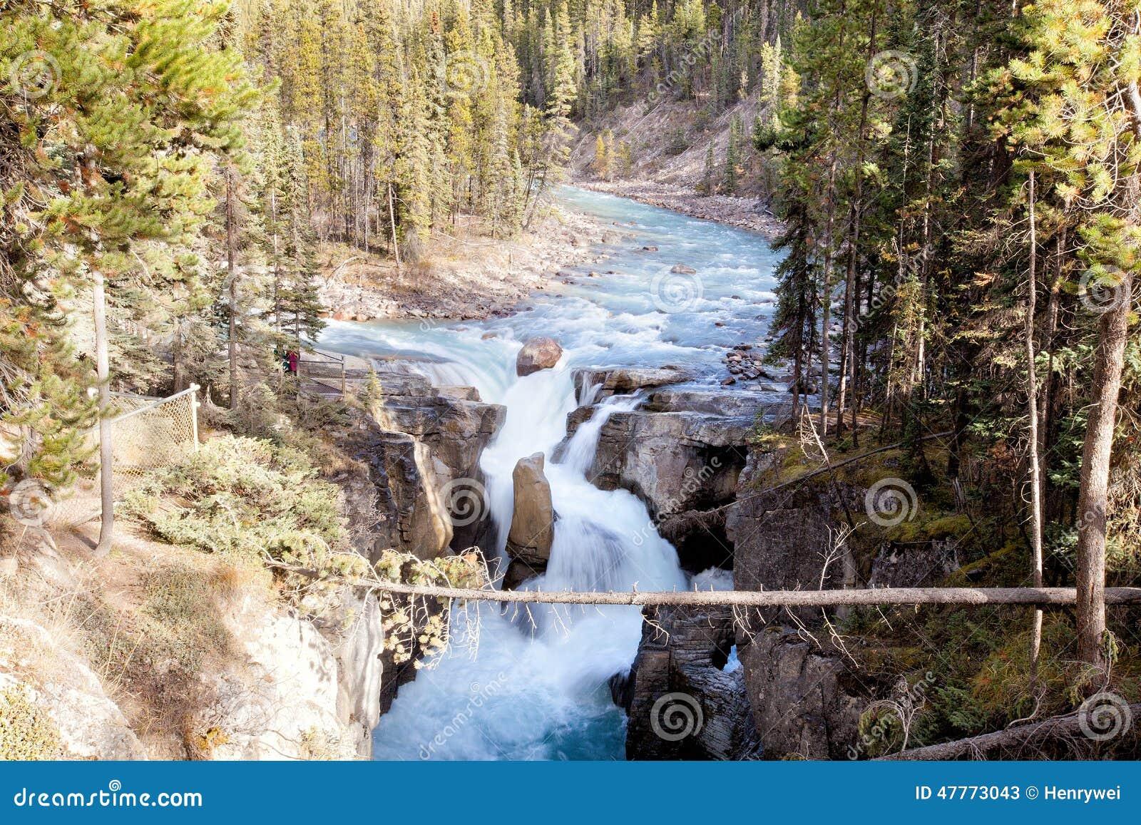 De Waterval van de Canion van Johnston in Nationaal Park Banff