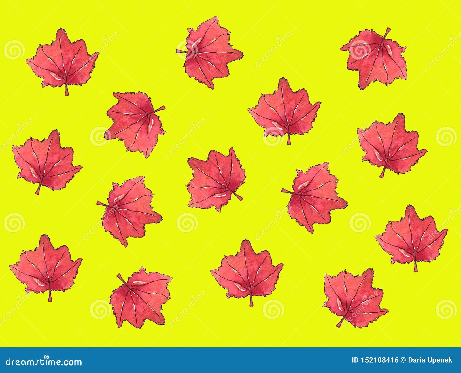 De waterverf van het van het achtergrond esdoornblad de herfstpatroon esdoornblad