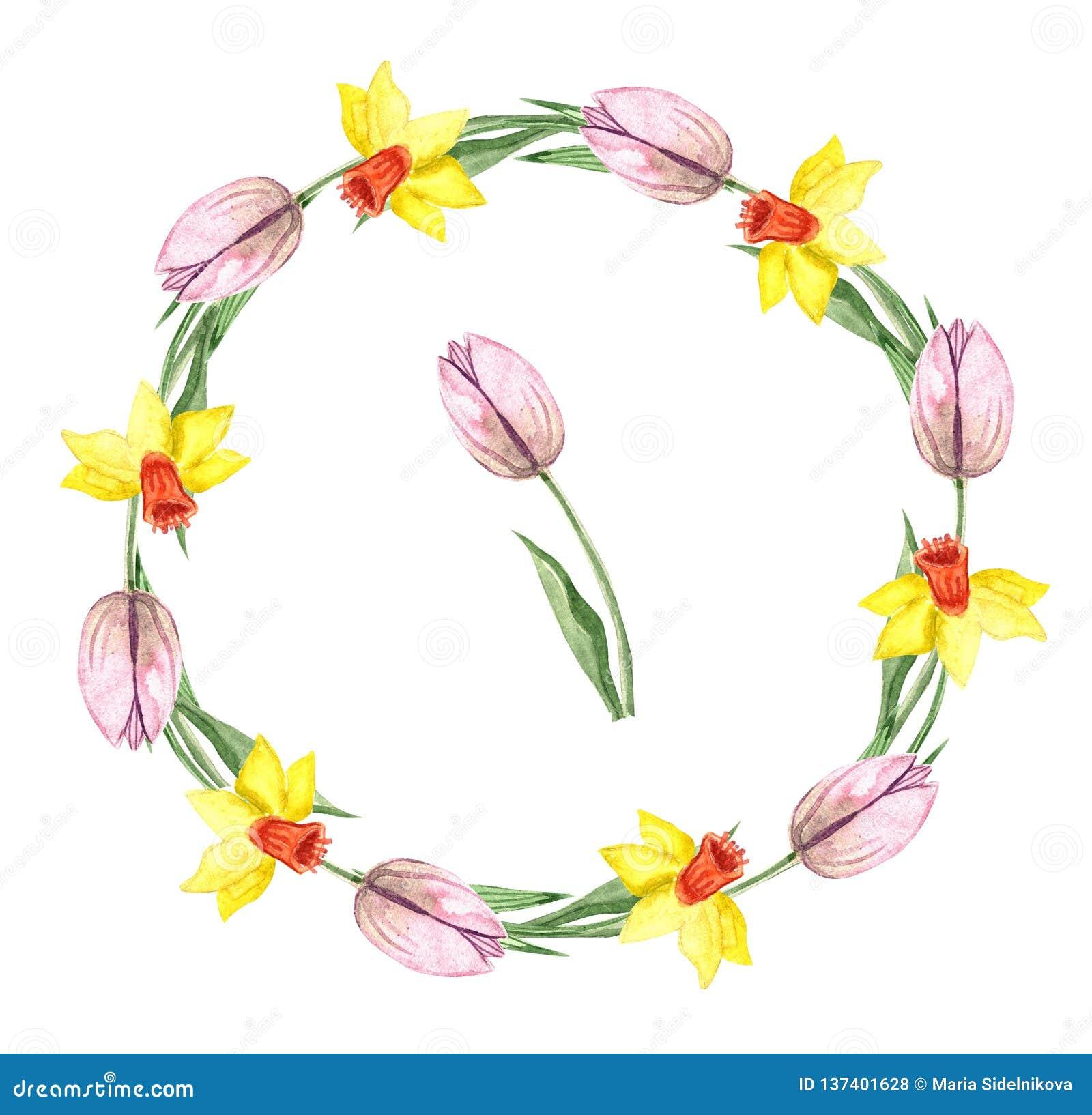De waterverfkroon met de lente bloeit: tulp en narcissen