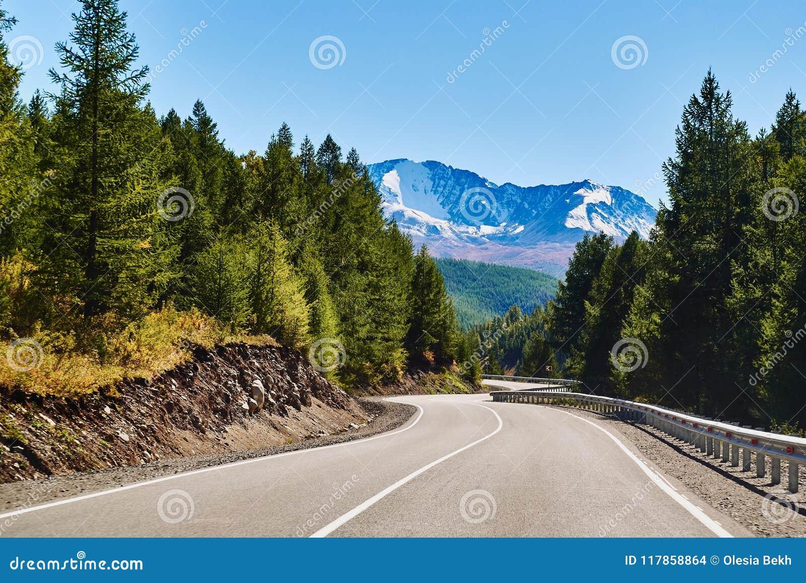 De weg door bos wordt omringd leidt tot de snow-covered noorden-Chuya waaier van de Altai-bergen, Siberië, Rusland dat