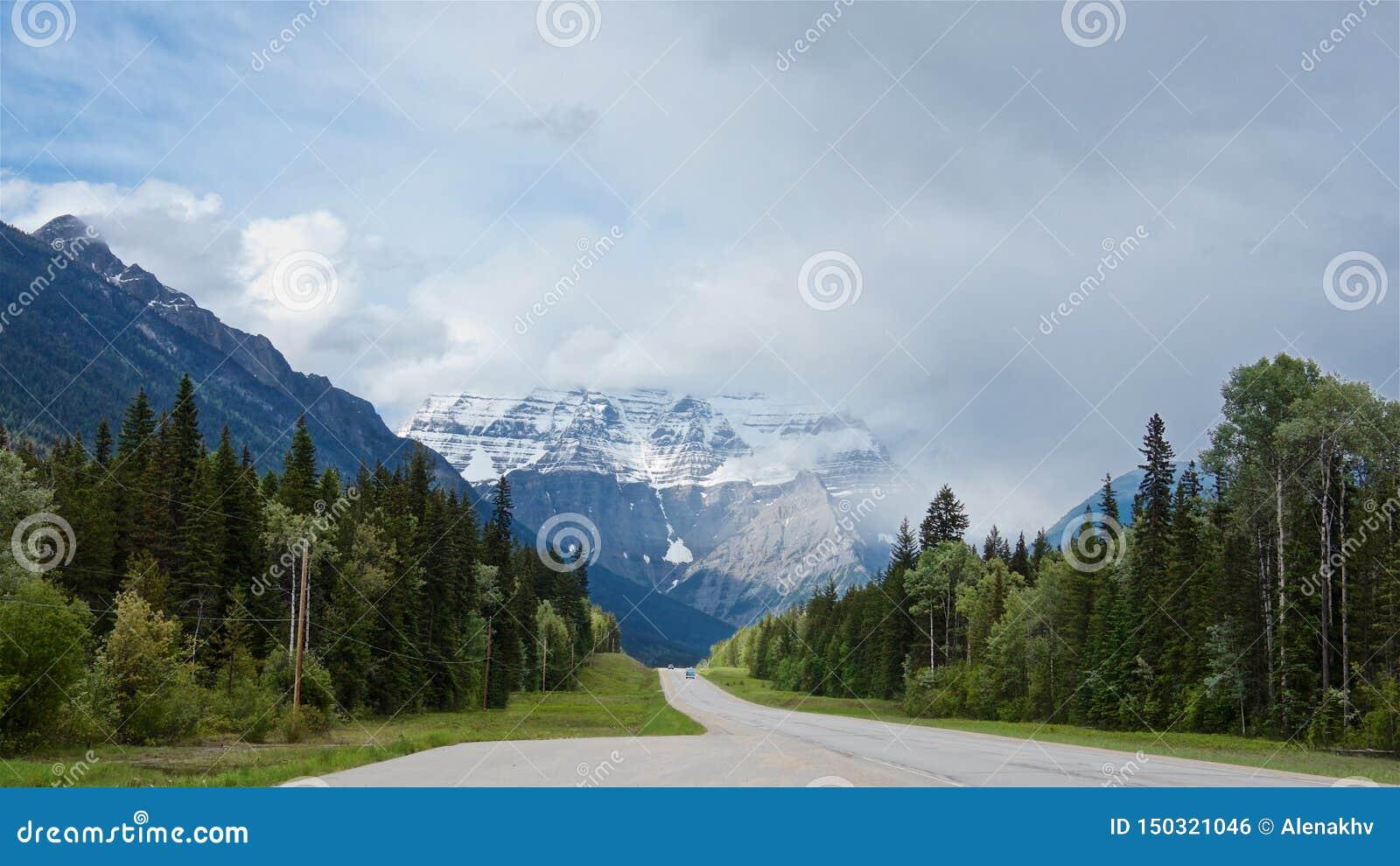 De weg van het Icefieldbrede rijweg met mooi aangelegd landschap leidt tot de voet van toneelrobson-berg in de zomer,