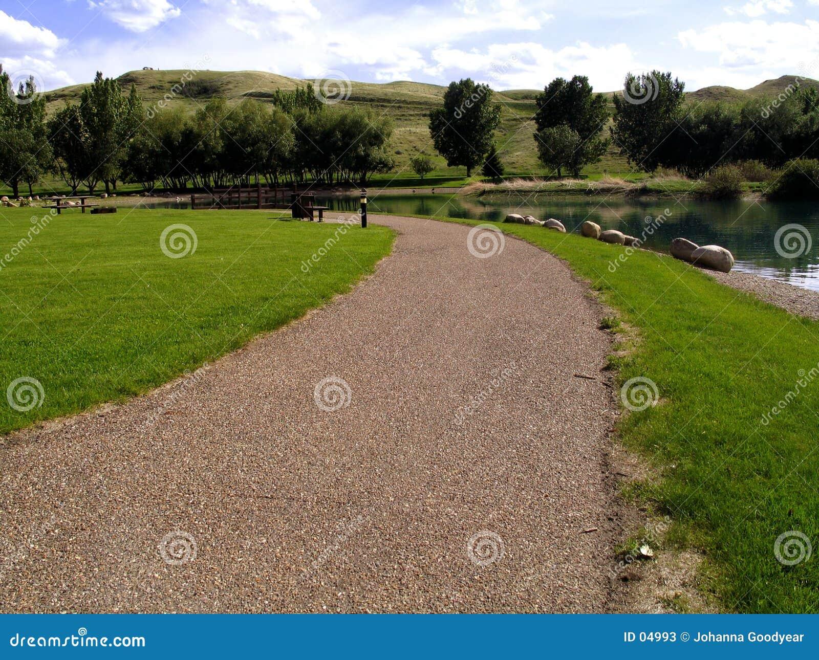 De Weg van het park