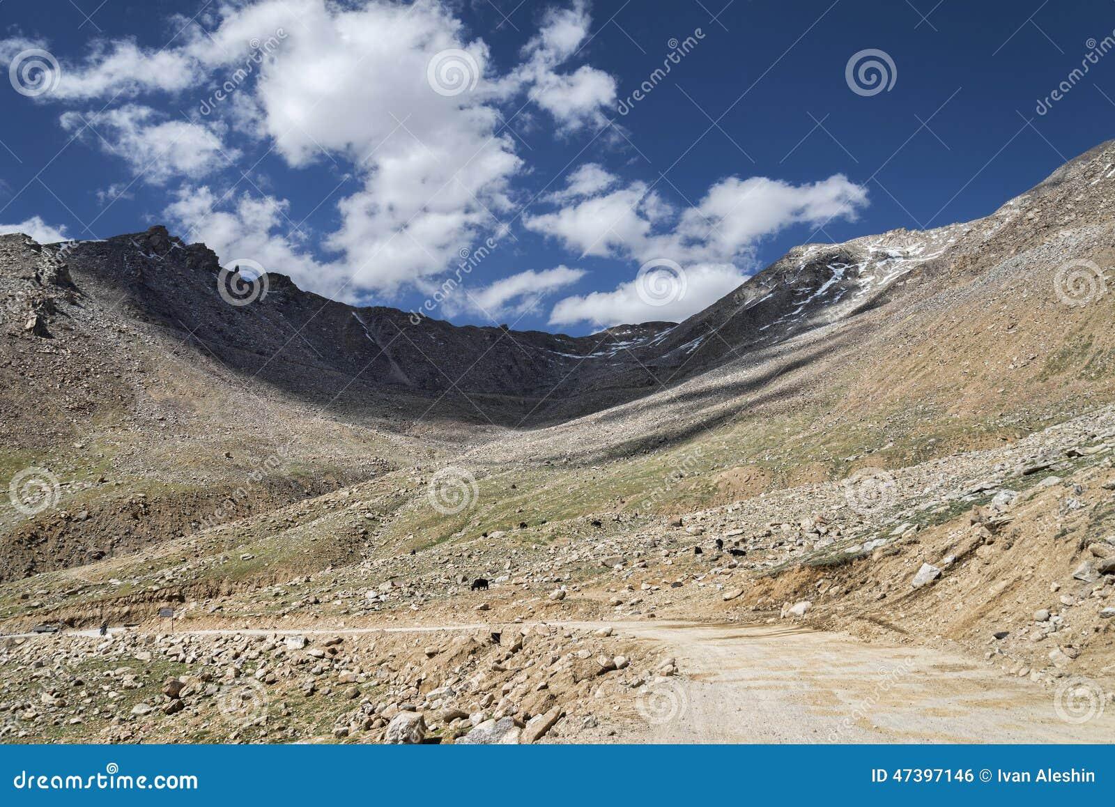 De wegkromming van de vuilberg met yaks die feediing naast