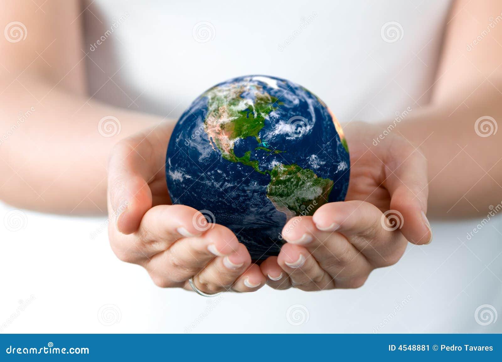 De wereld van de holding
