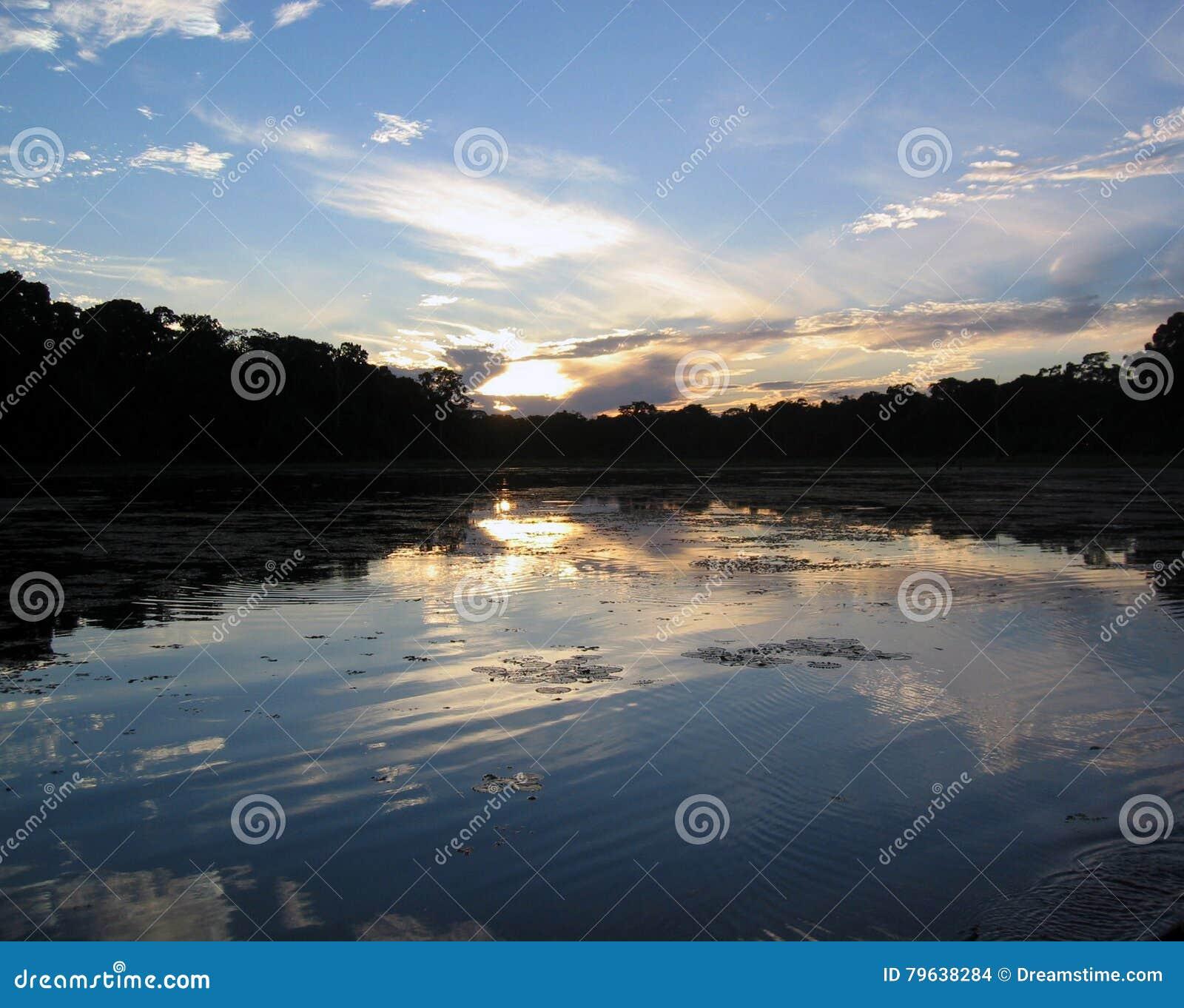 De Wildernis van Amazonië - Manu, Peru