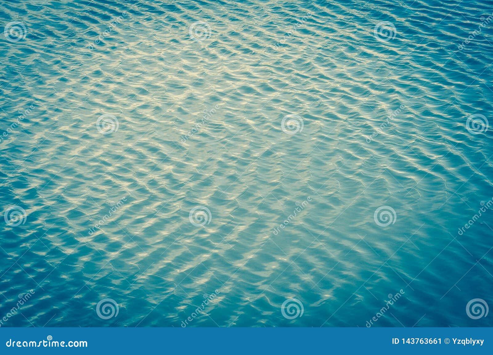 De windgolven het water en de vormengolven