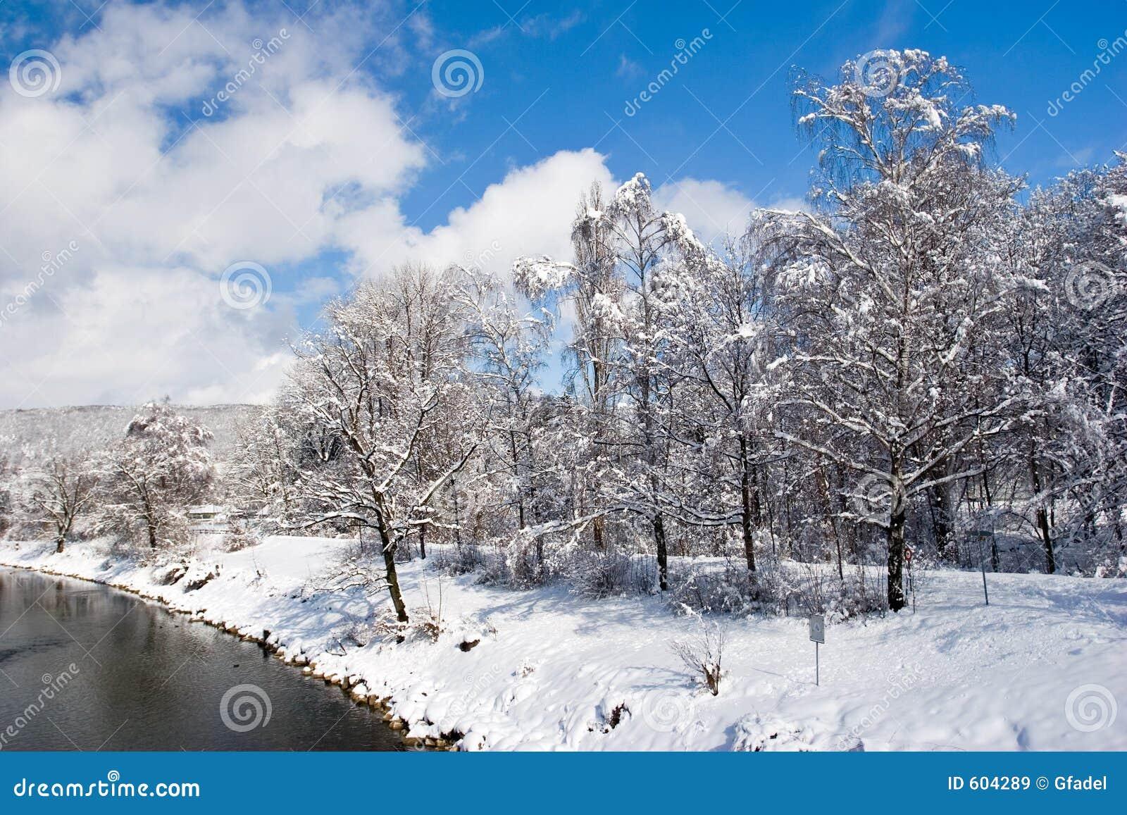 De winter