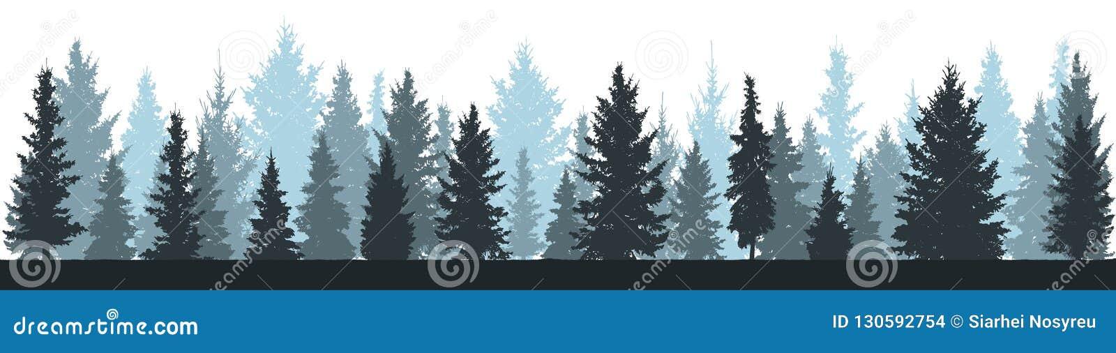 De winter bossparren, net silhouet op witte achtergrond