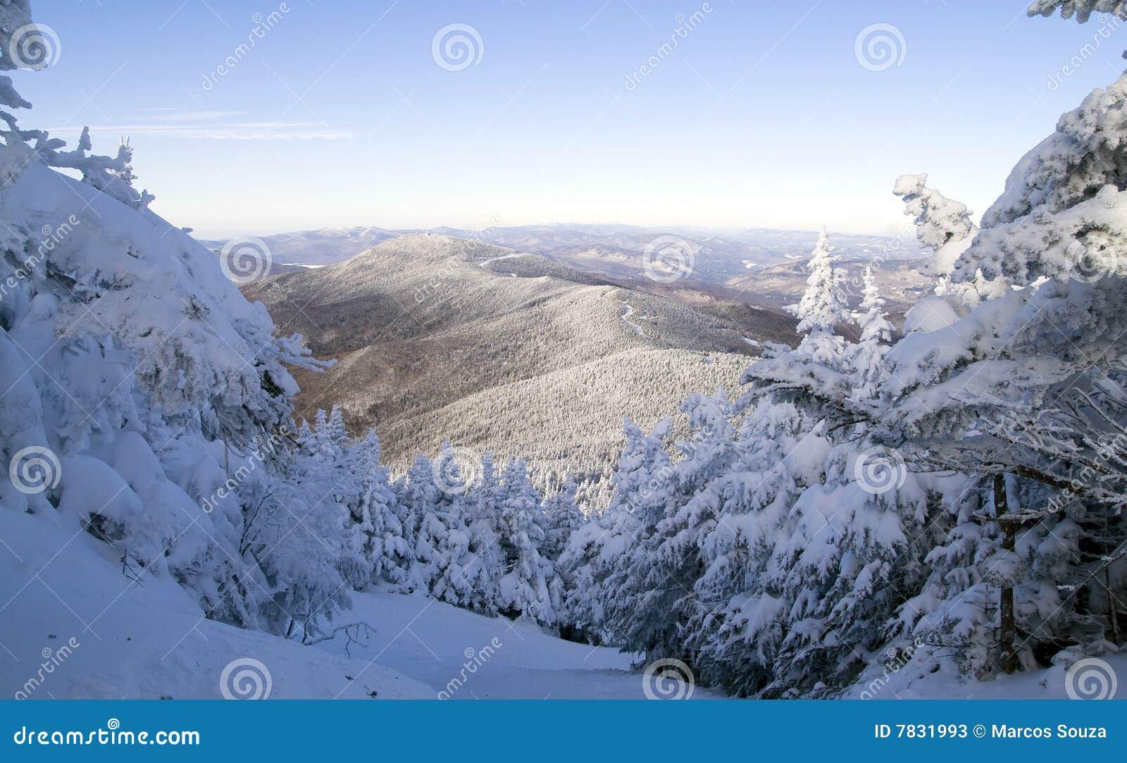 De winter in de Bergen