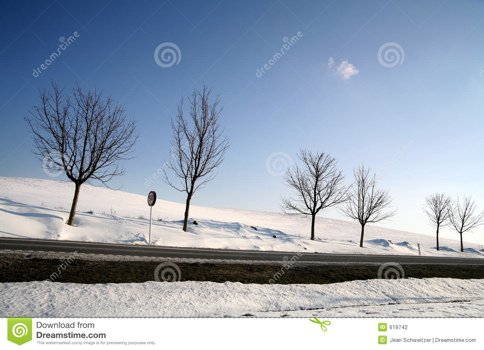 De winter in Denemarken