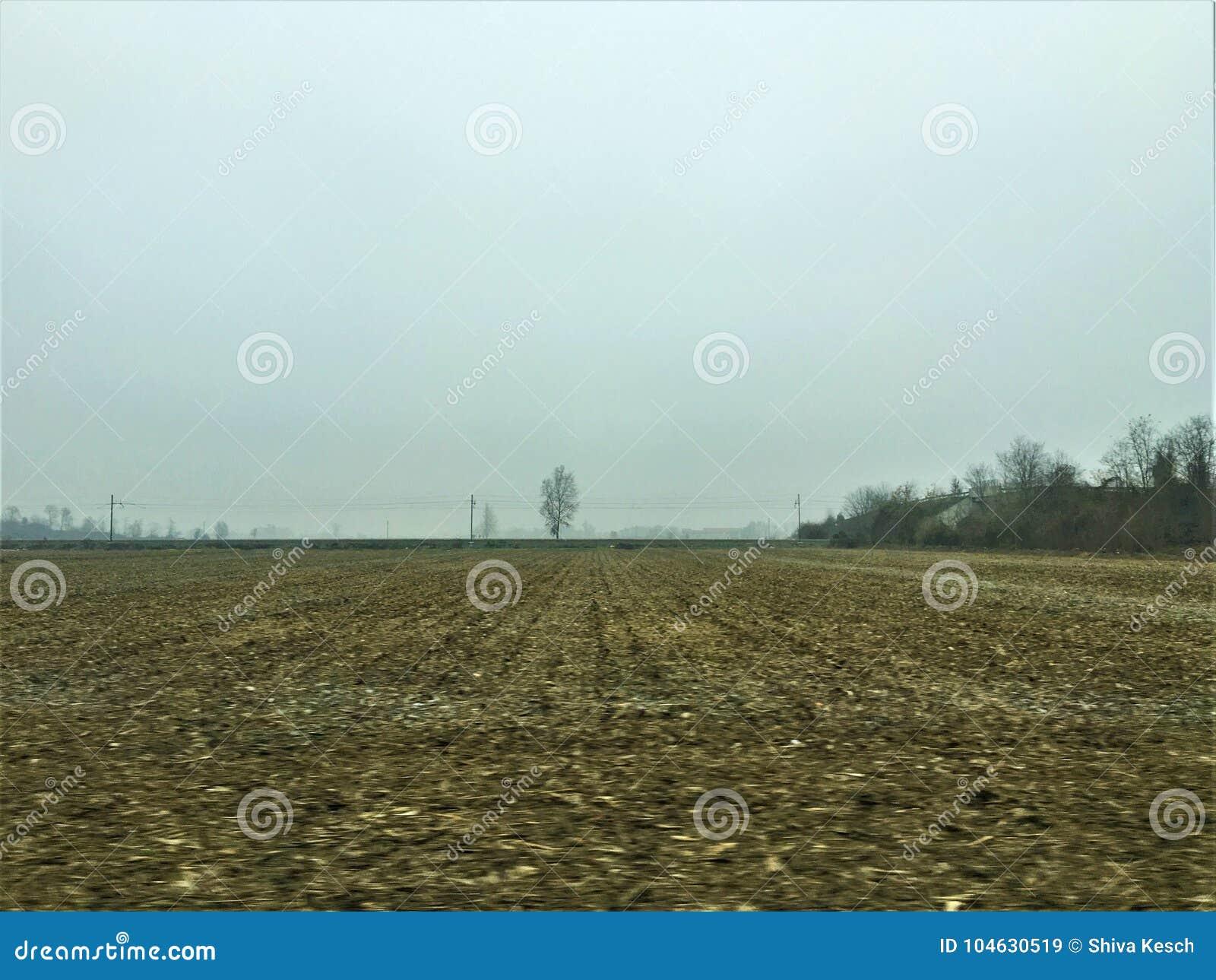 Download De winter, gebied en mist stock afbeelding. Afbeelding bestaande uit alleen - 104630519