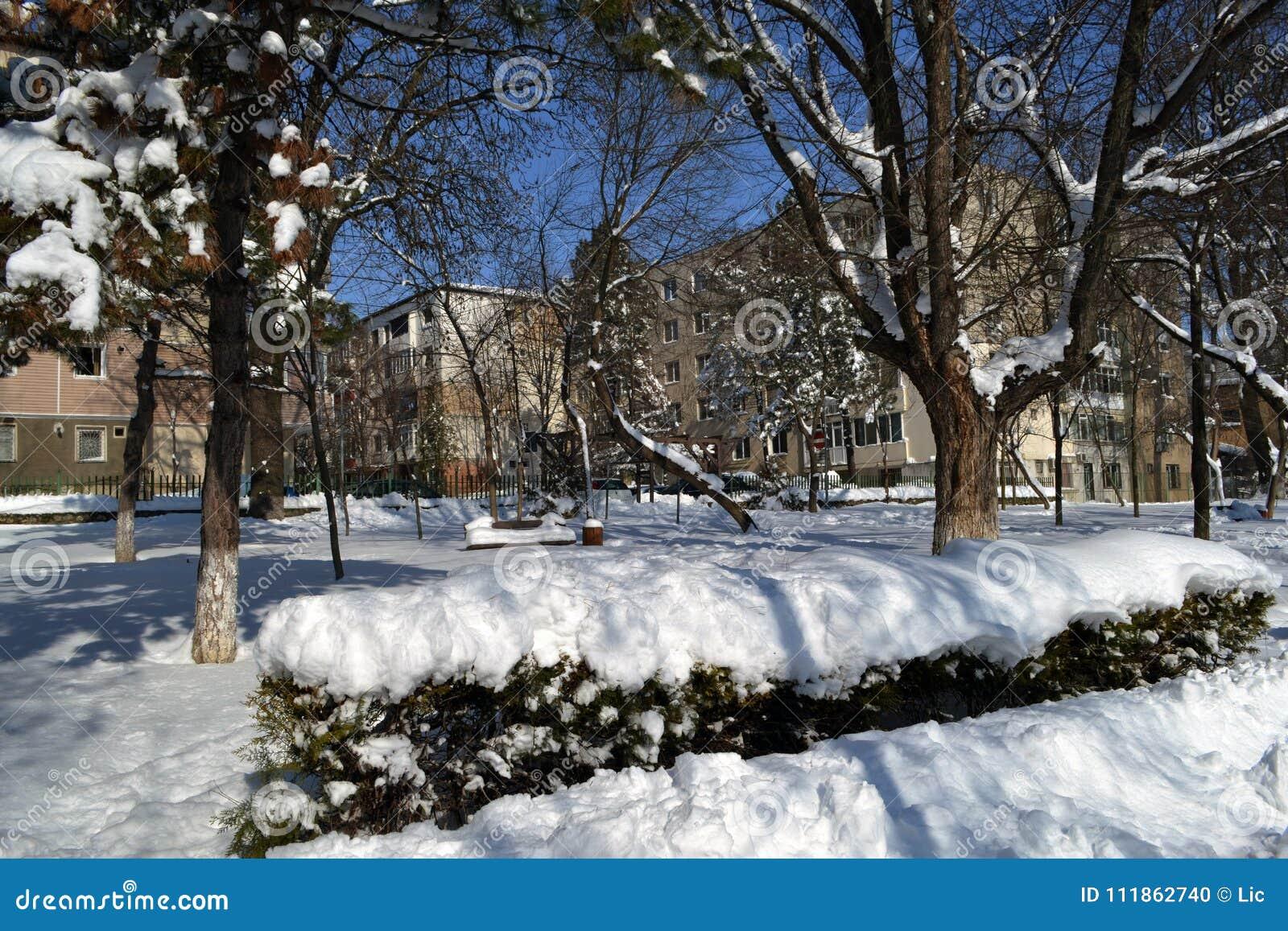 De winter in Maart in stadspark 2