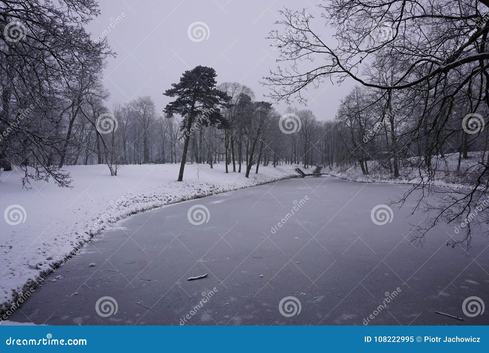 De winter in Park 2