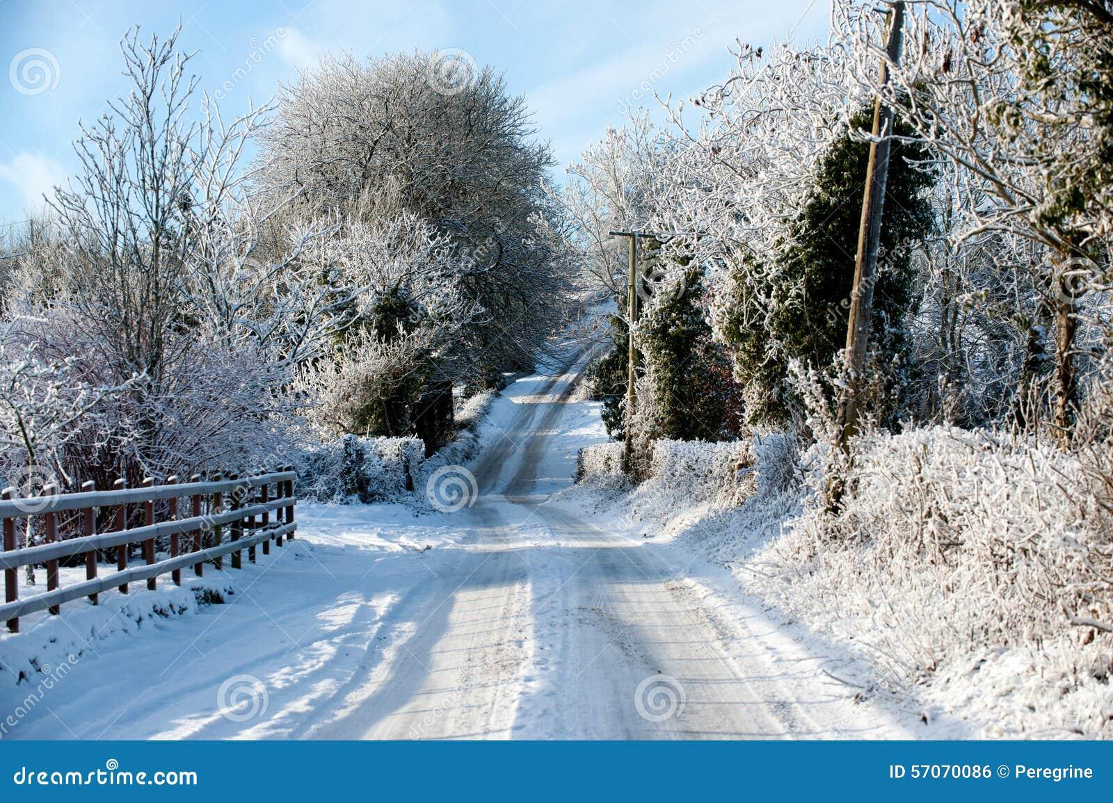 De winterdag in het land