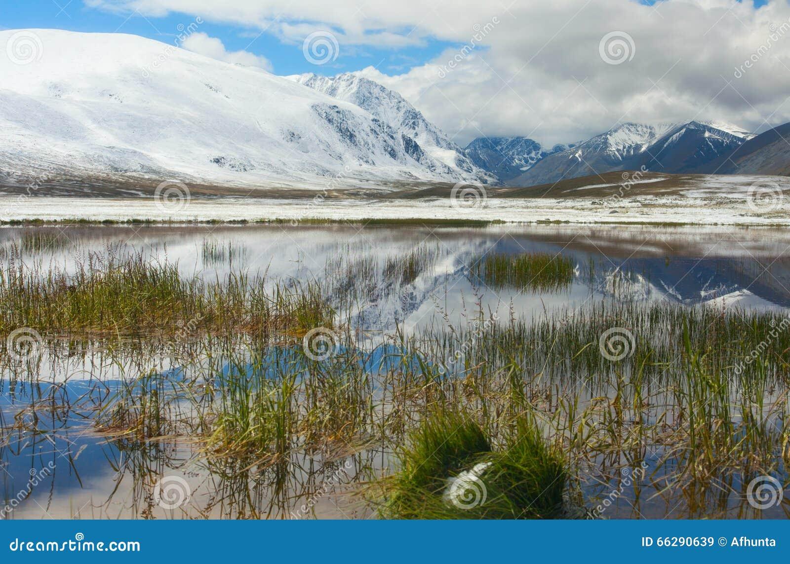 De winterdag van het bergmeer