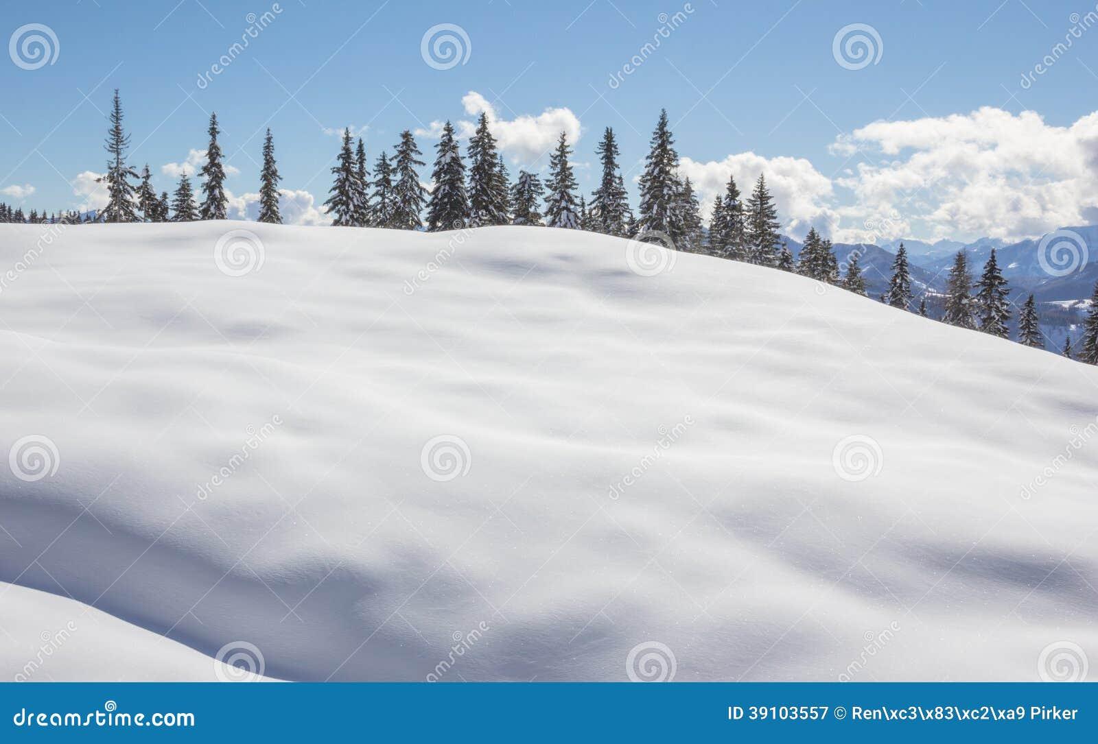 De winterlandschap met Bomensneeuw en Blauwe Hemel