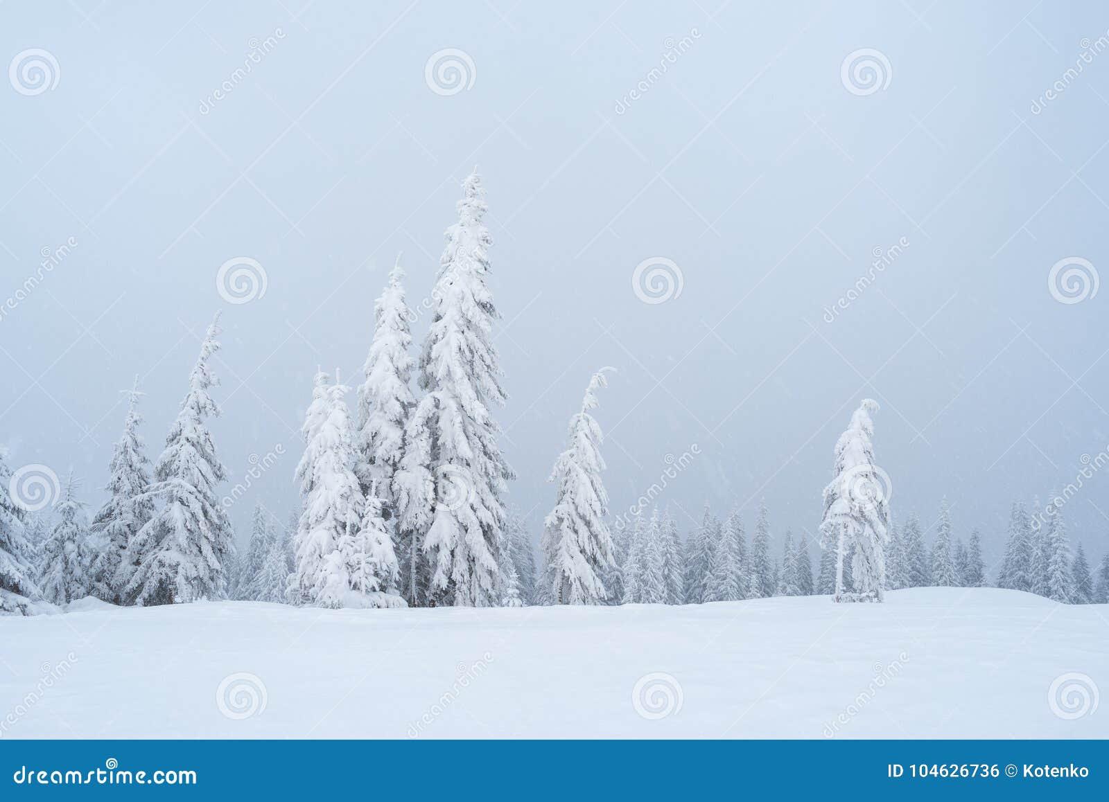 Download De Winterlandschap Met Mist In De Bergen Stock Foto - Afbeelding bestaande uit toneel, achtergrond: 104626736