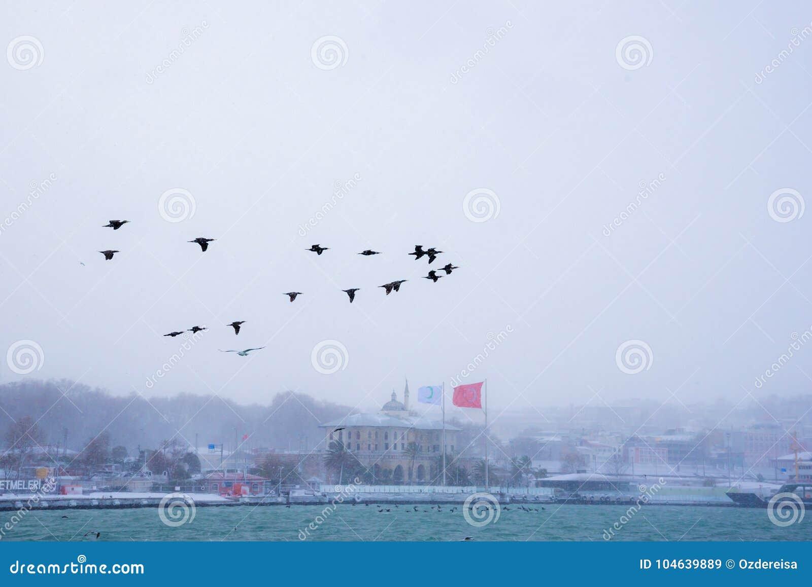 Download De Wintermening Van Bosphorus In Istanboel, Turkije Redactionele Stock Afbeelding - Afbeelding bestaande uit cityscape, azië: 104639889