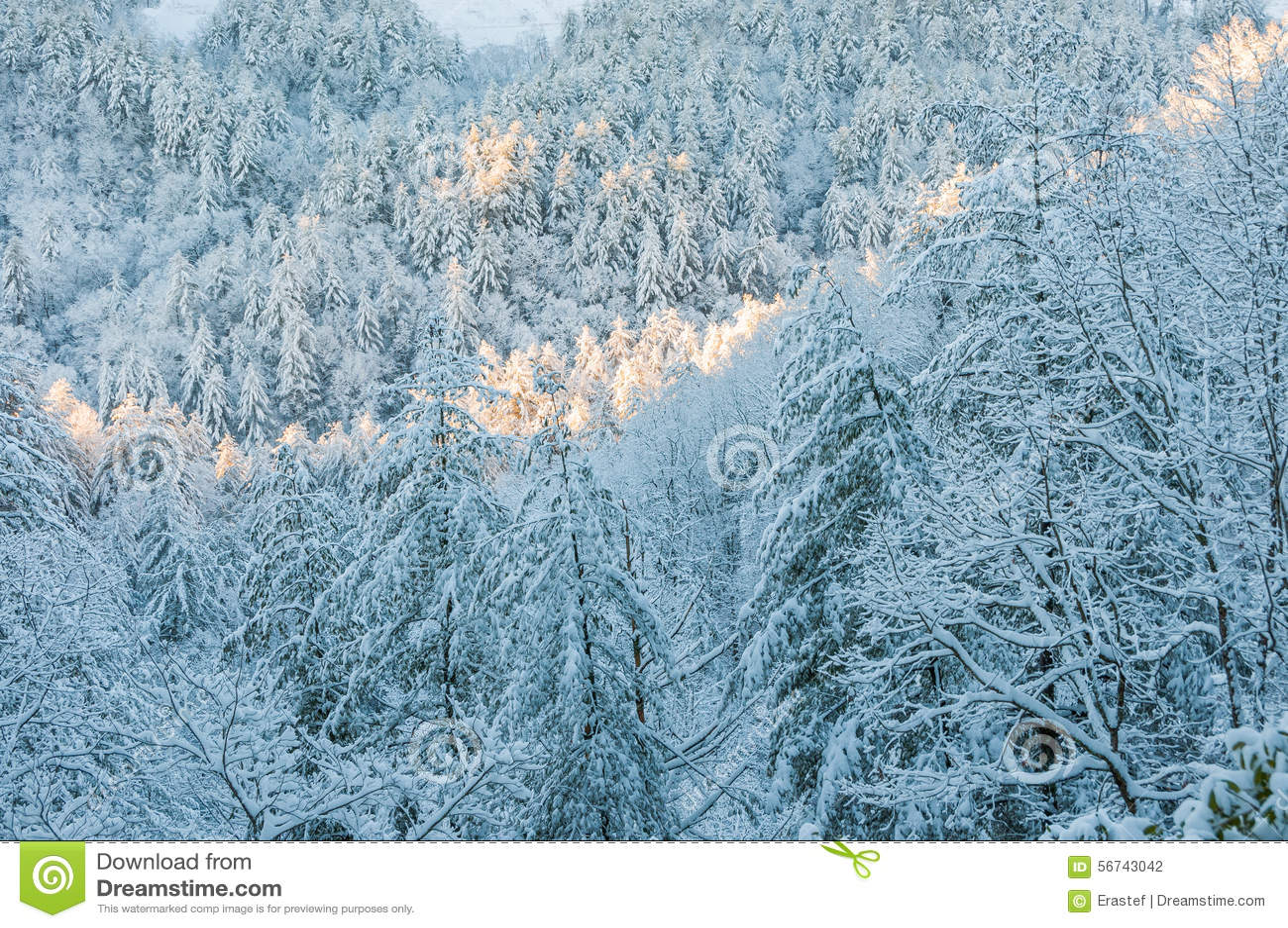 De winteronweer in appalachia
