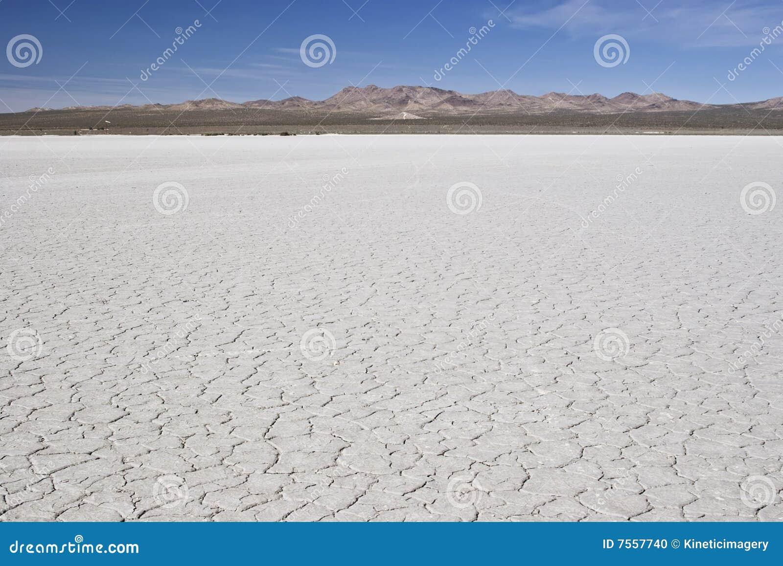 De woestijn van Te