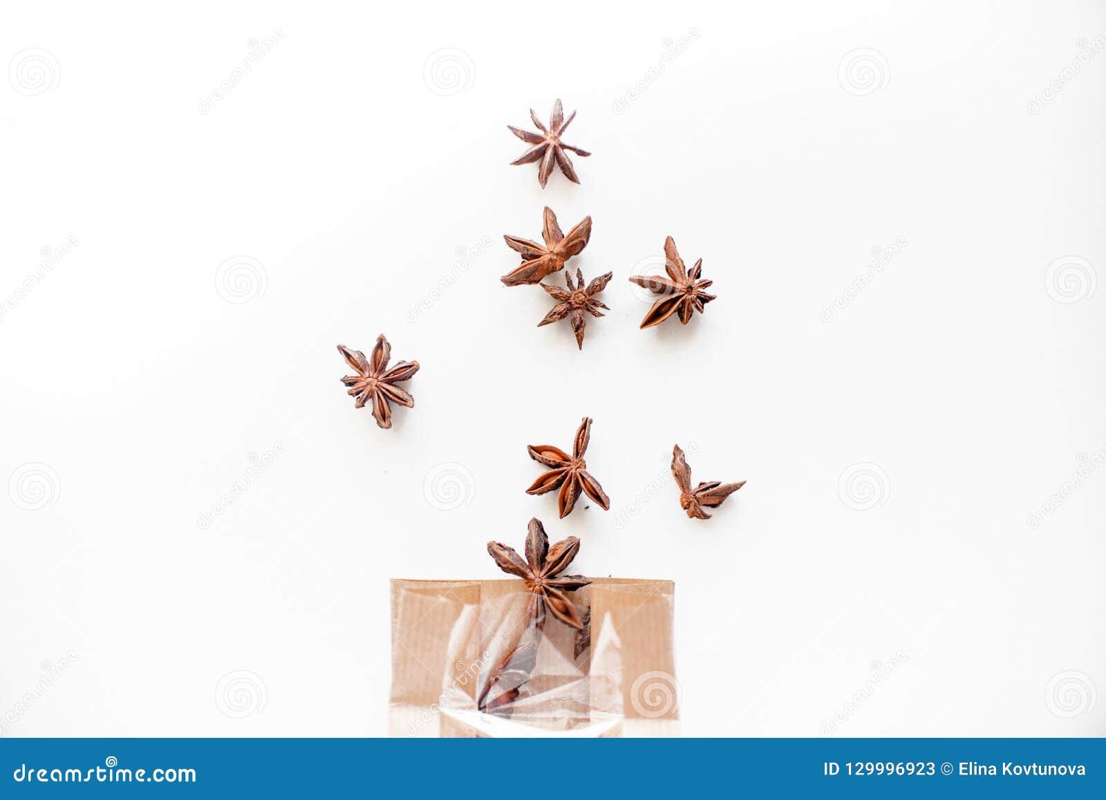 De zaden van de anijsplantboom op witte achtergrond