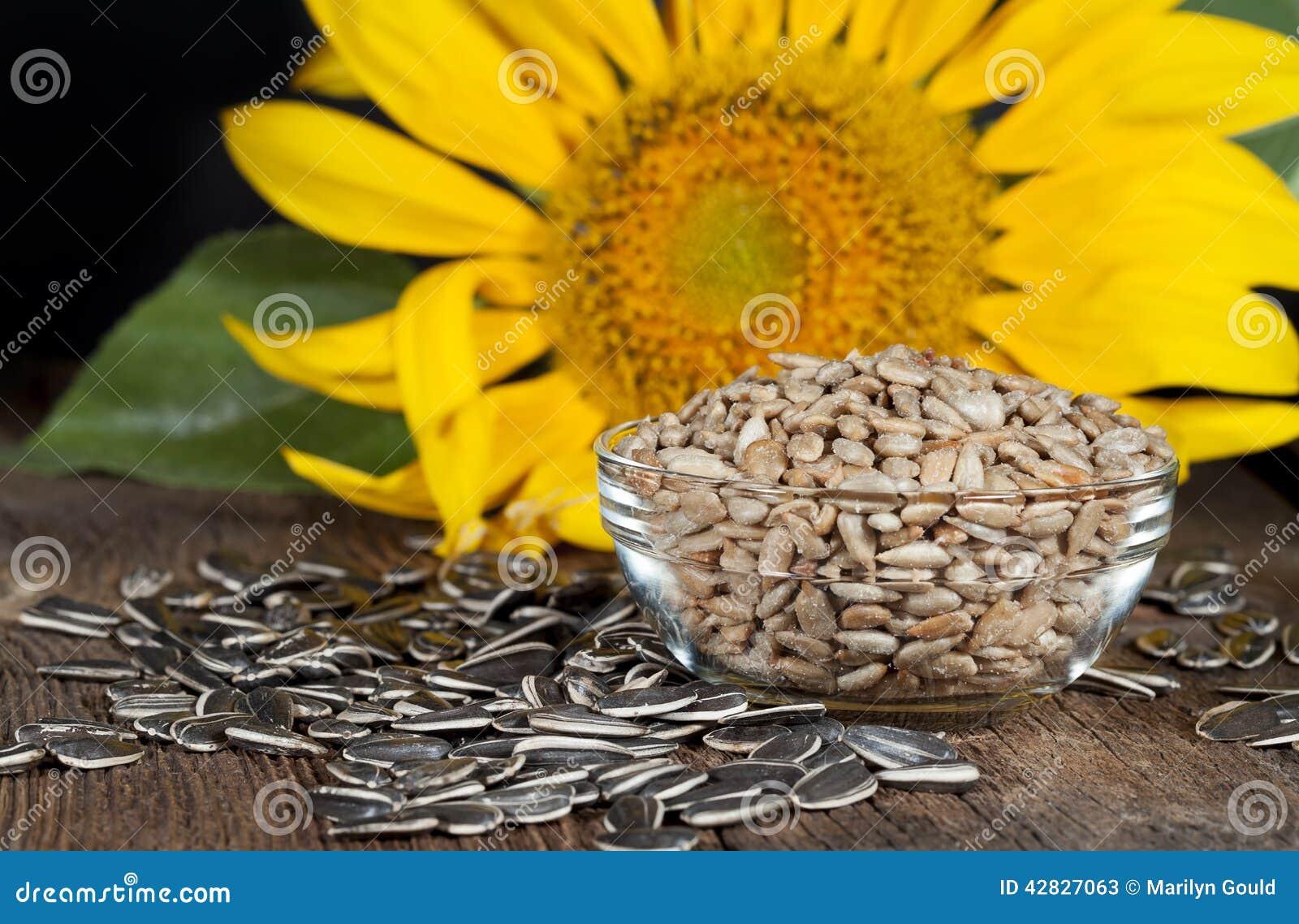 De zaden van de zonnebloem