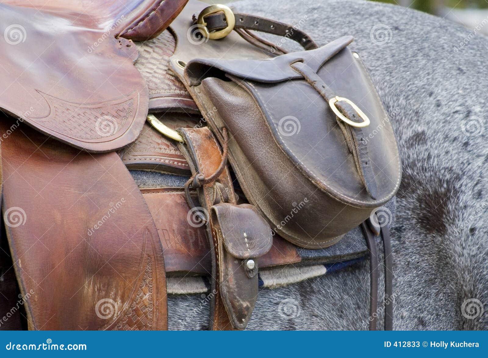 De Zak van het zadel op Paard