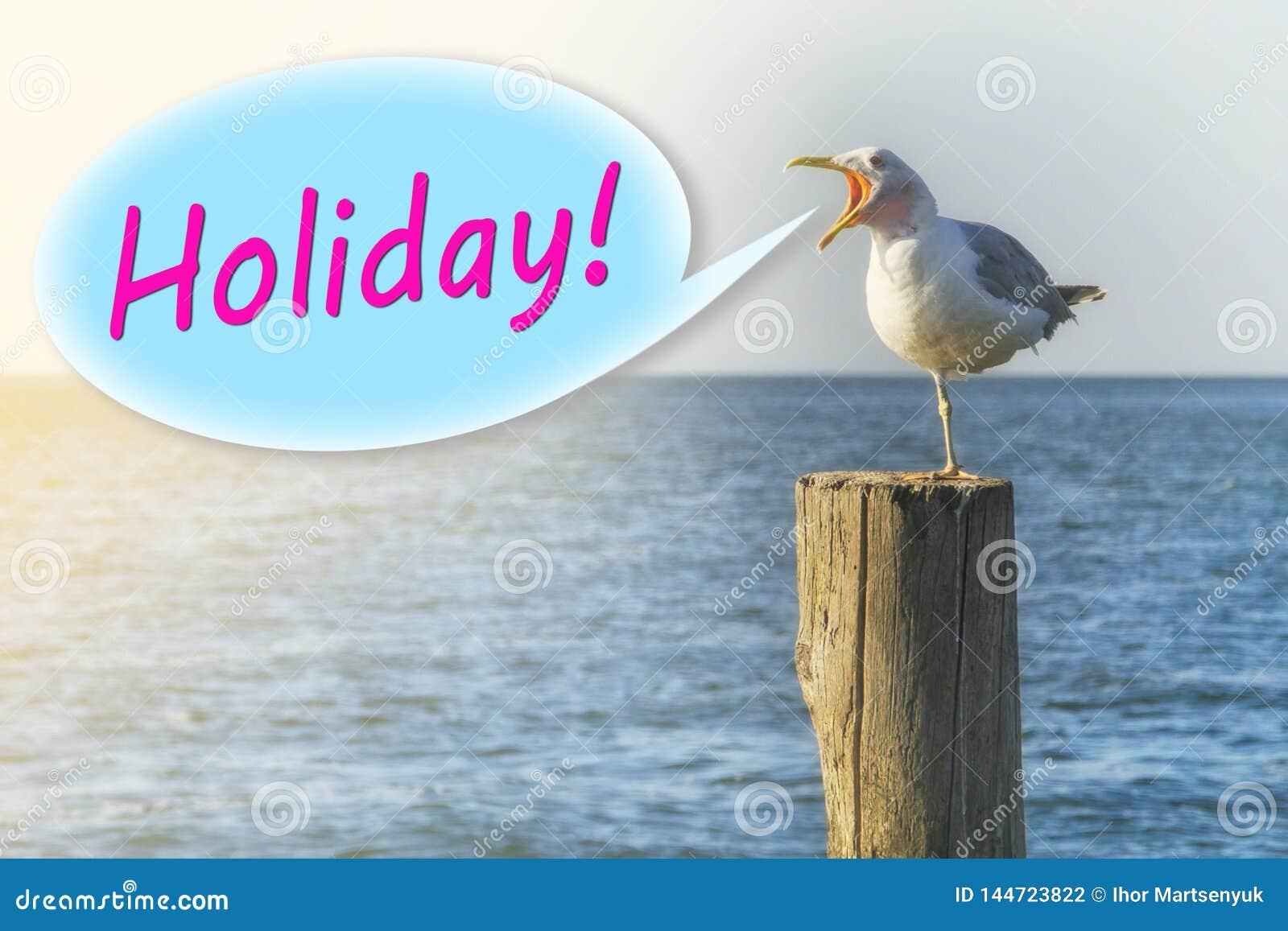 De zeemeeuw schreeuwt 'vakantie 'op een houten kolom op de kust