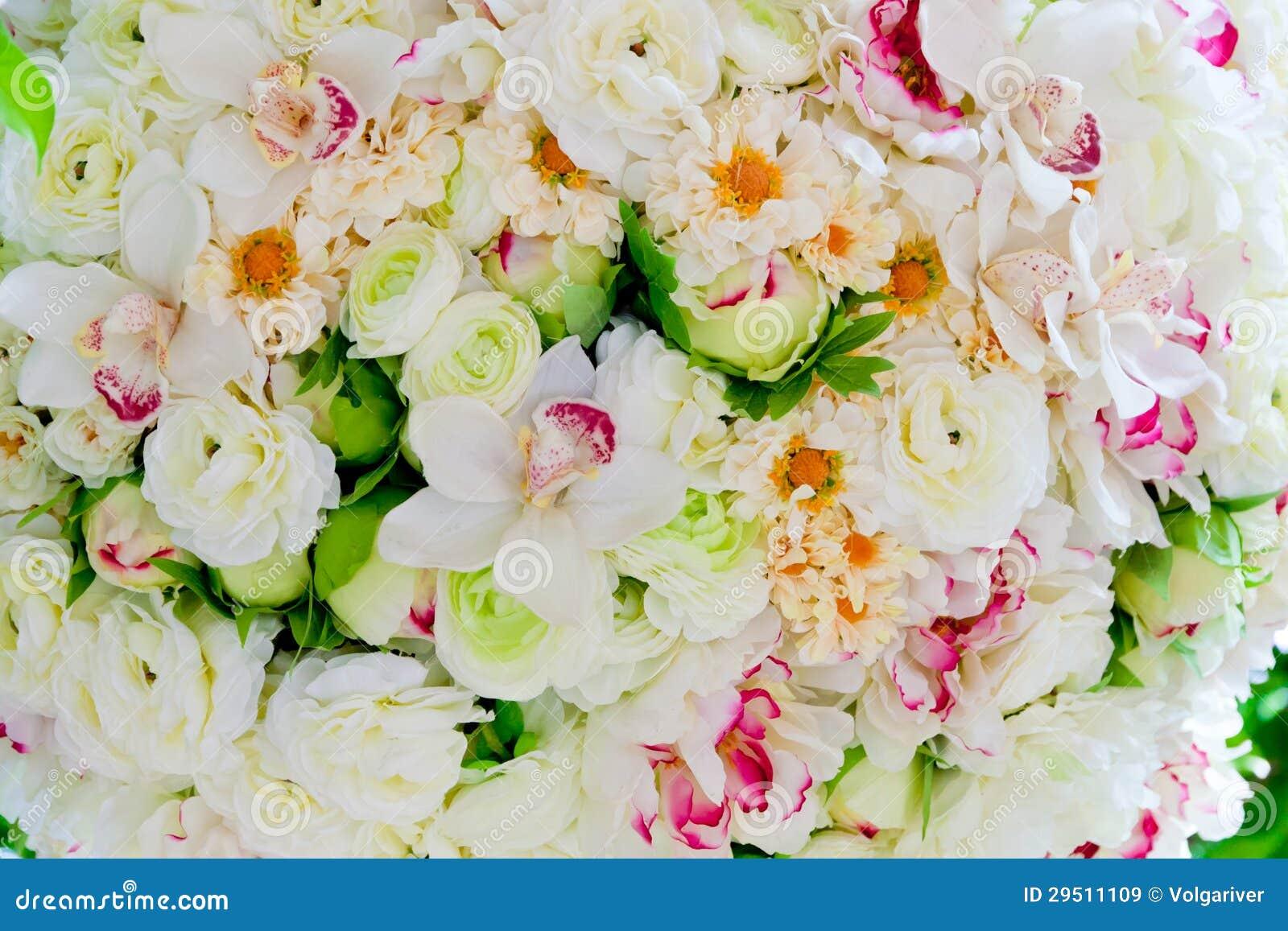 De zijde bloeit achtergrond